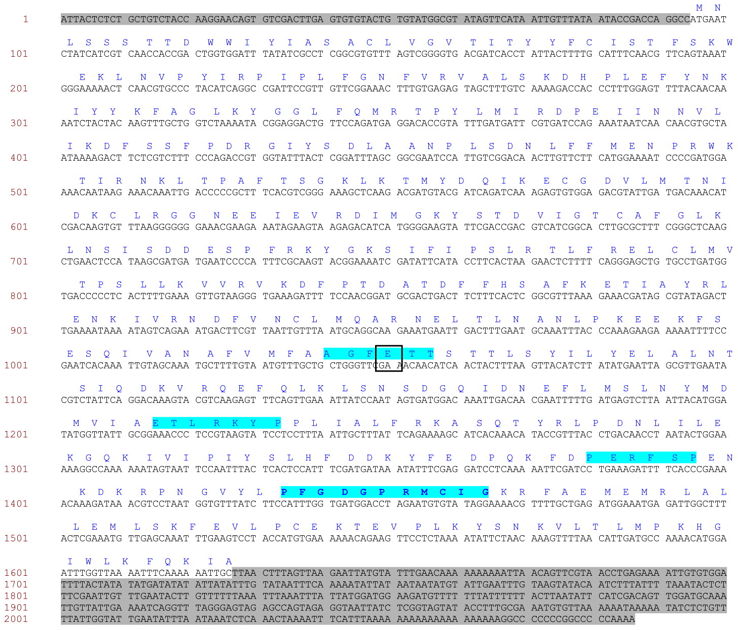Complete mRNA sequence of <i>M. persicae CYP6CY3.</i>