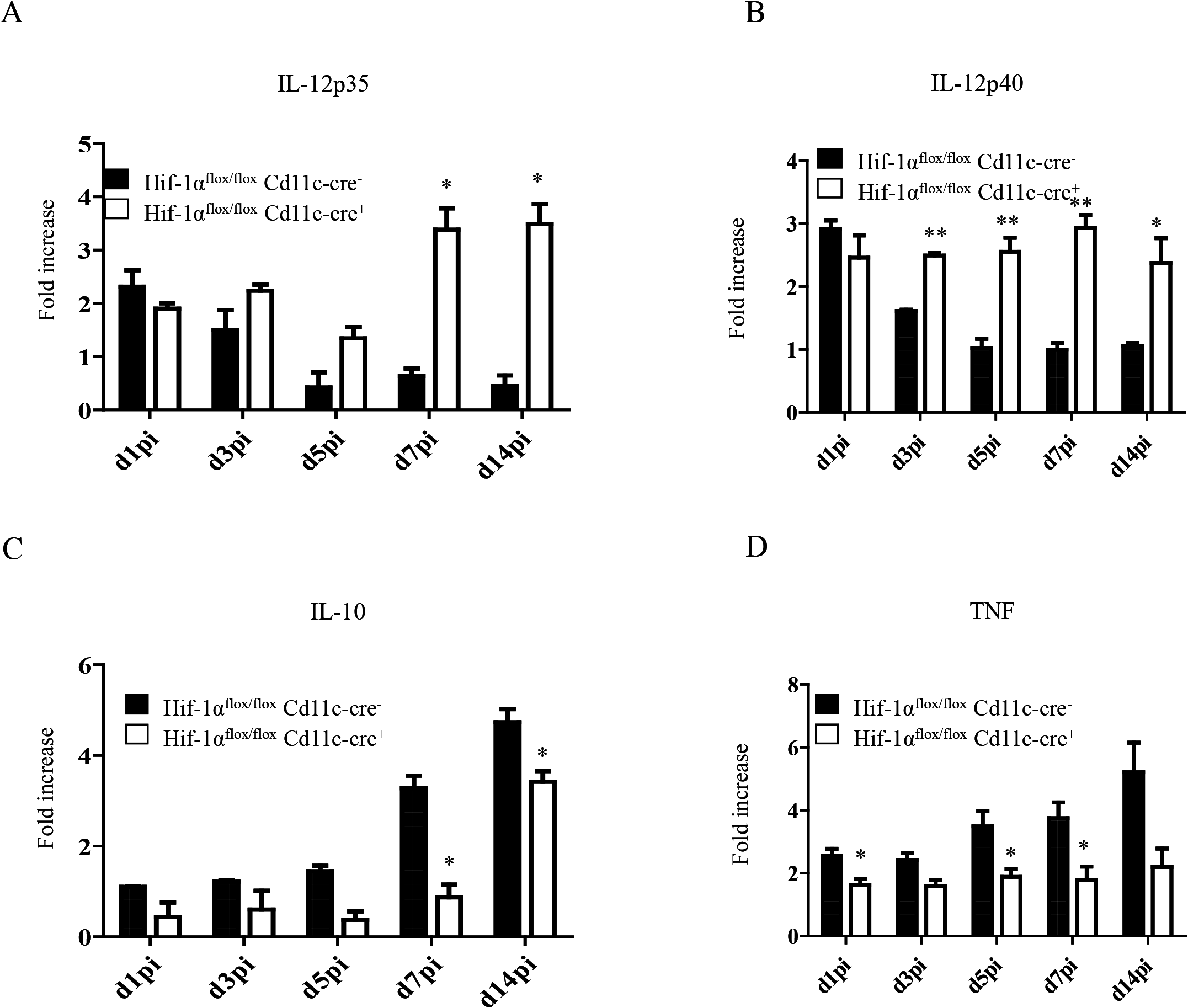 HIF-1α hampers dendritic cell function.