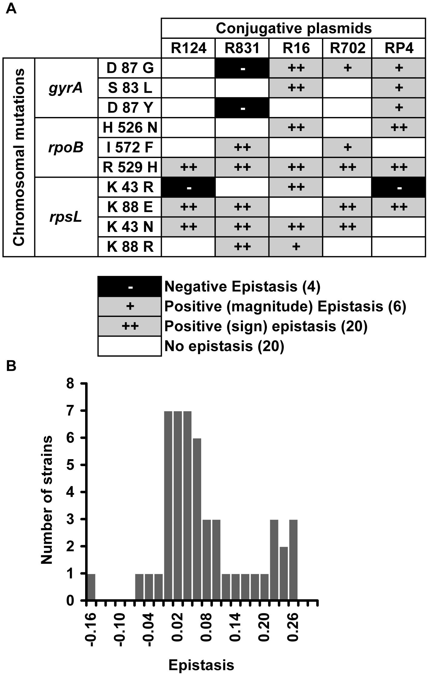 Epistasis between antibiotic resistance mutations and conjugative plasmids.