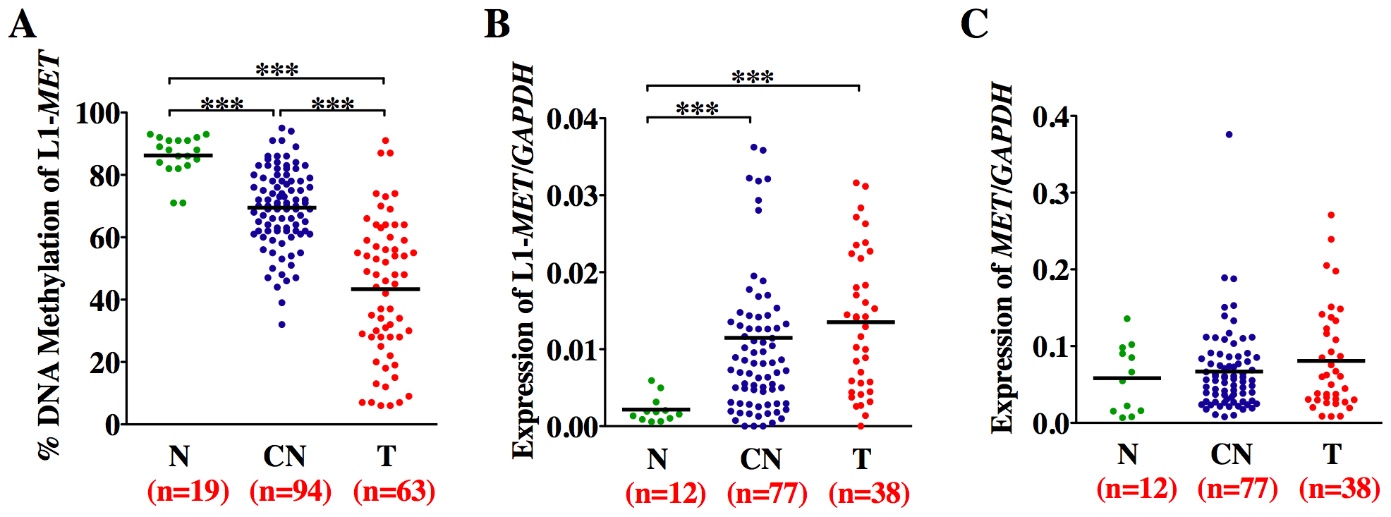 Methylation and expression status of L1-<i>MET</i> correlates in bladder tissues.
