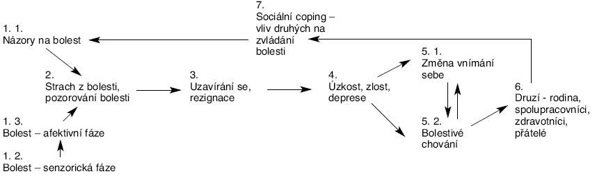 Schéma 1. Psychologické procesy při chronické bolesti