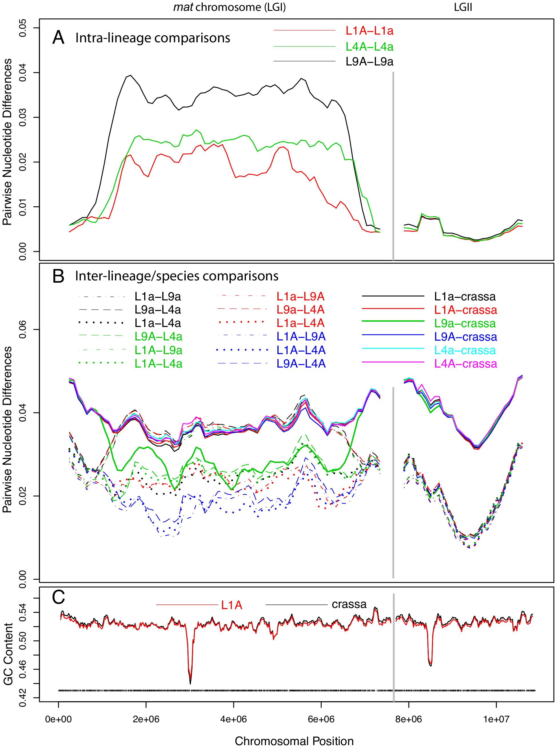 Pair-wise divergences of the mating-type (<i>mat</i>) chromosomes and one selected autosome of <i>Neurospora tetrasperma</i> lineages and <i>Neurospora crassa</i>.