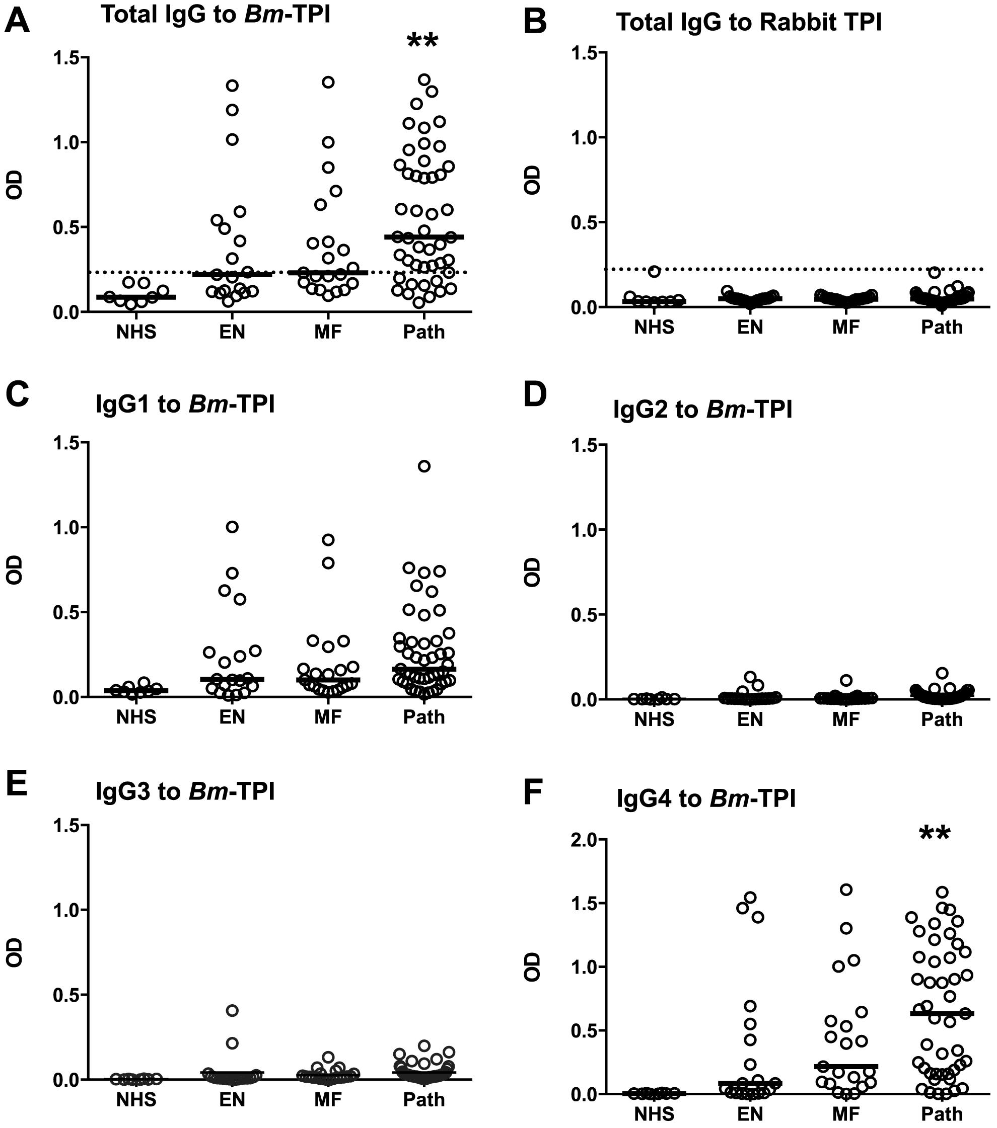 Anti-<i>Bm</i>-TPI antibody levels in <i>B. malayi</i>-infected human filariasis patients.