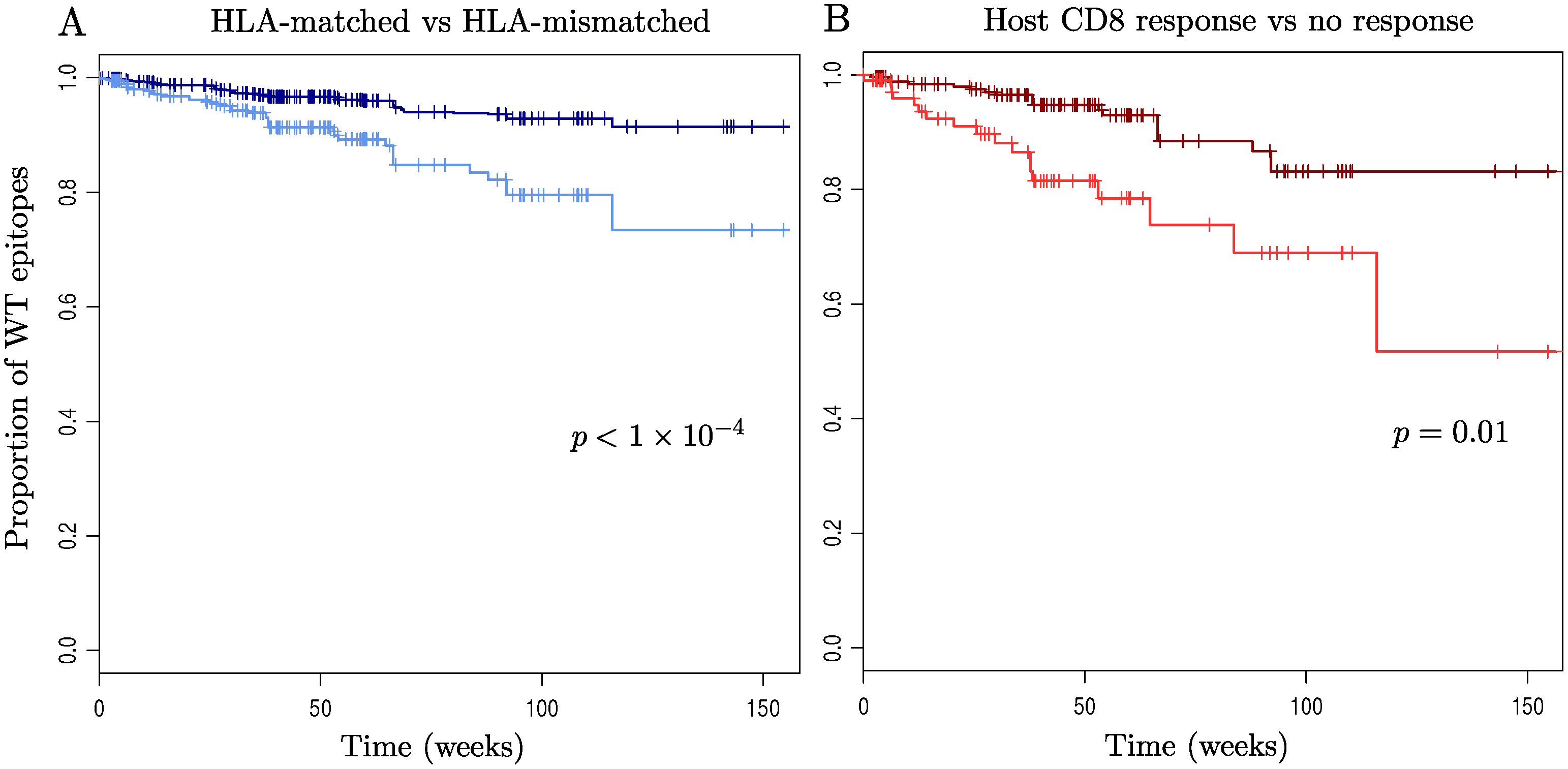 Kaplan-Meier survival curves for wild-type epitopes.