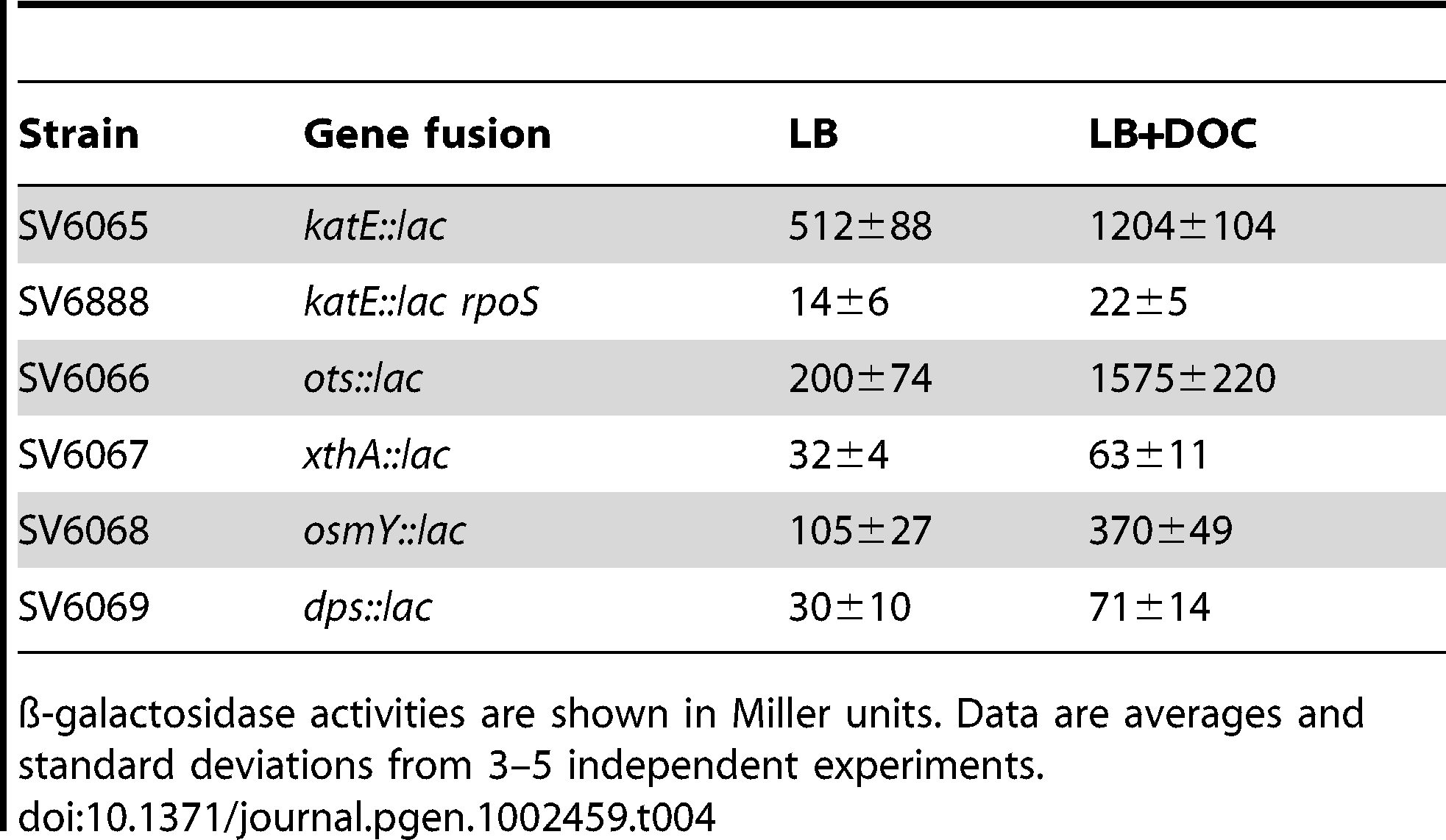 ß-galactosidase activities of <i>lac</i> fusions in RpoS-regulated genes in the presence and in the absence of sodium deoxycholate in stationary phase.