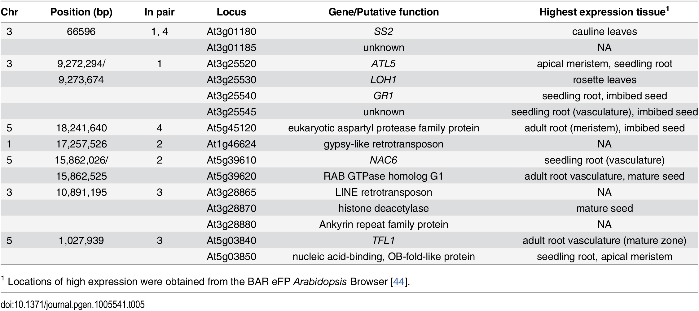 Function and expression patterns of genes in LD with leading SNP from epistatic GWAS analysis.