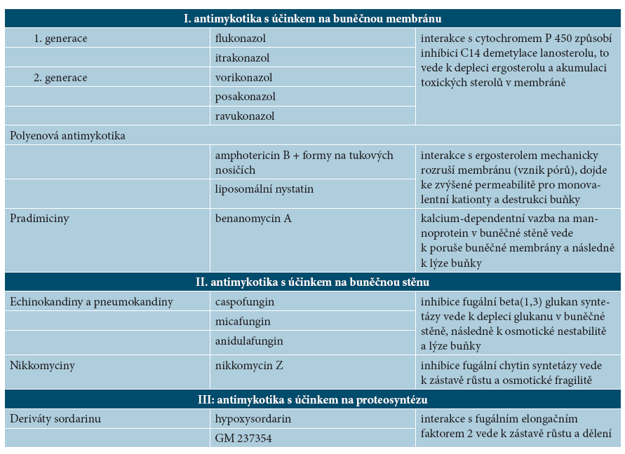 Mechanismus účinku antimykotik