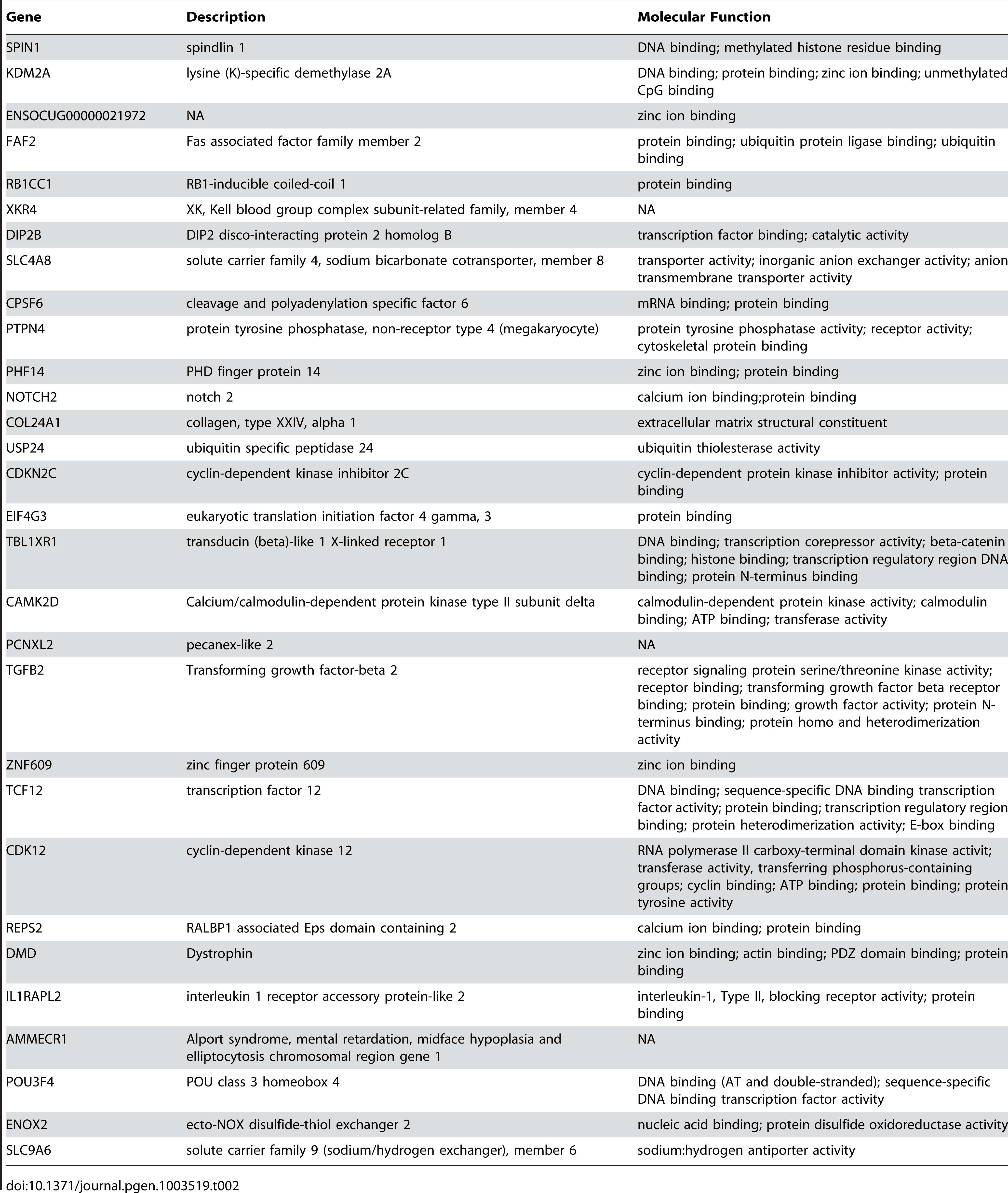List of protein coding genes found in regions of differentiation containing a single annotated gene.