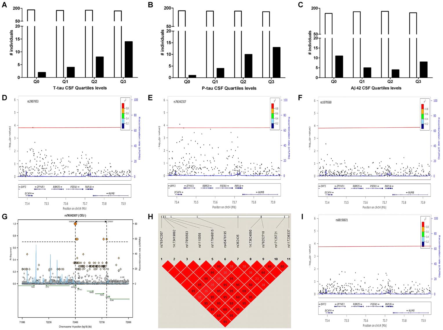 Distribution of <i>PSEN1</i> p.E318G mutation carriers in CSF Biomarker quartiles.
