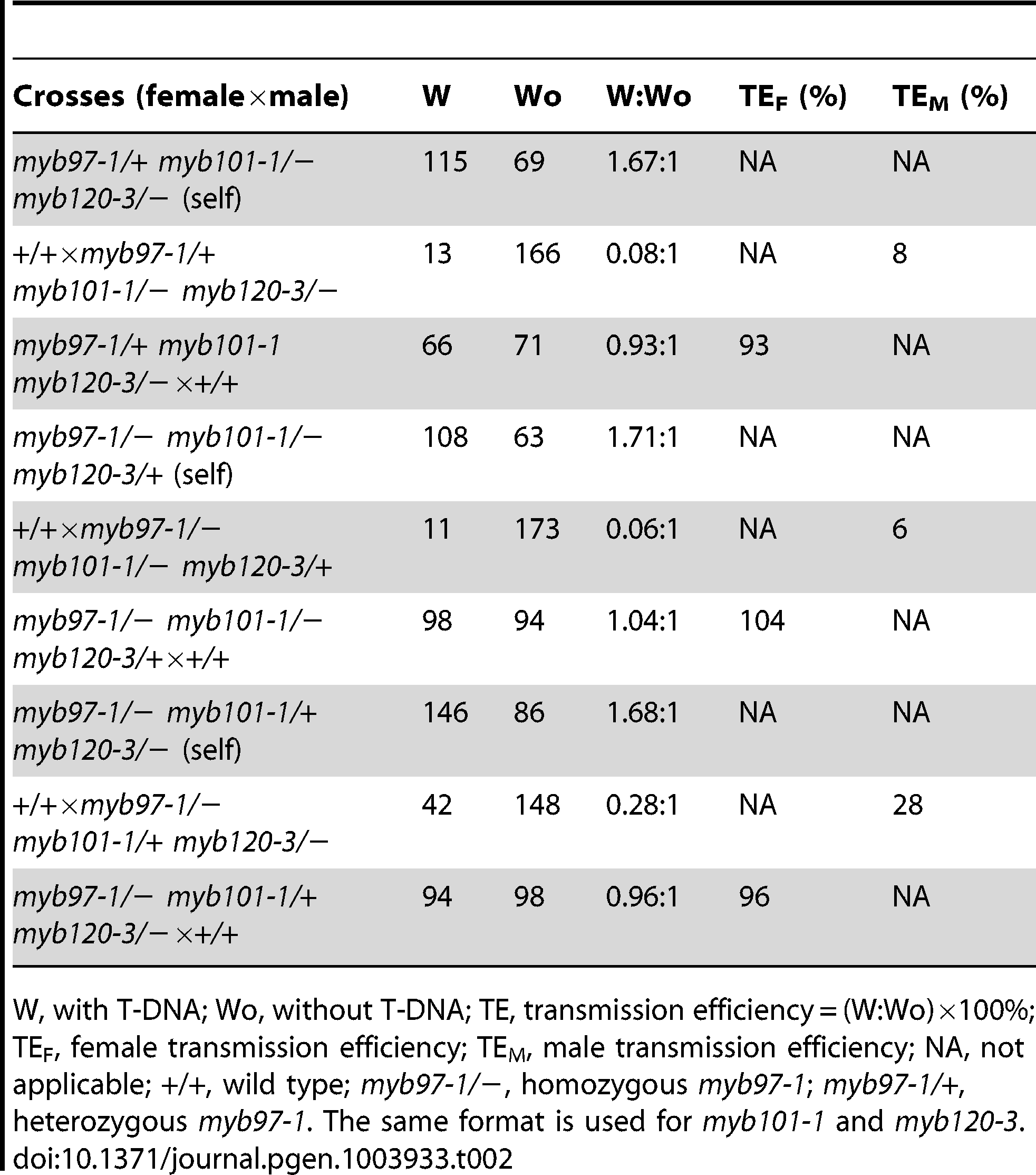 Genetic analysis of <i>myb97-1 myb101-1 myb120-3</i> heterozygous mutants.