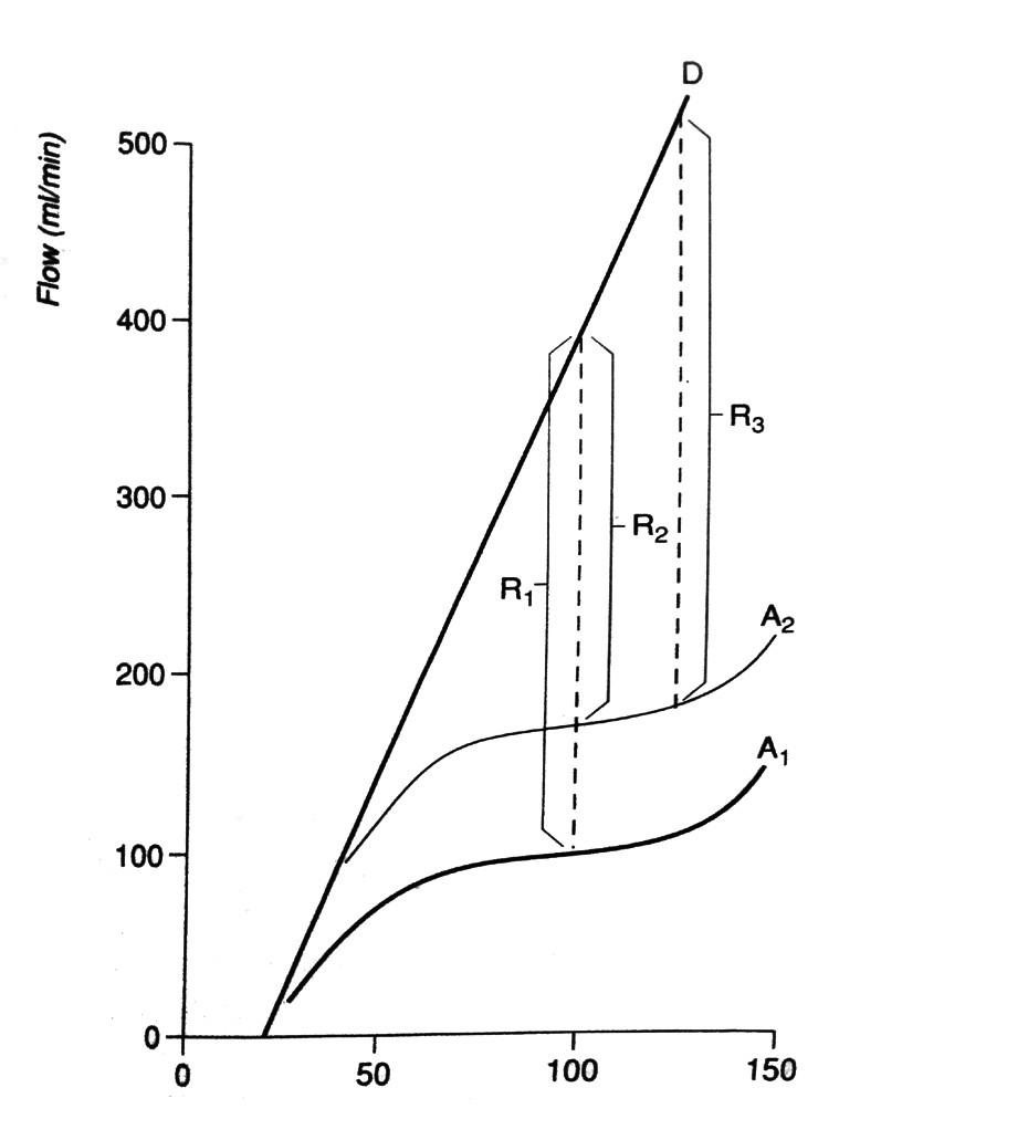 Vztah perfuzního tlaku (x) a koronárního průtoku