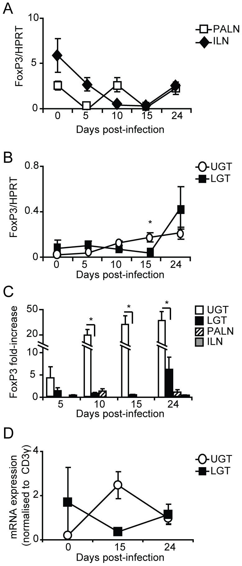 Infection induces Tregs in the genital tract.