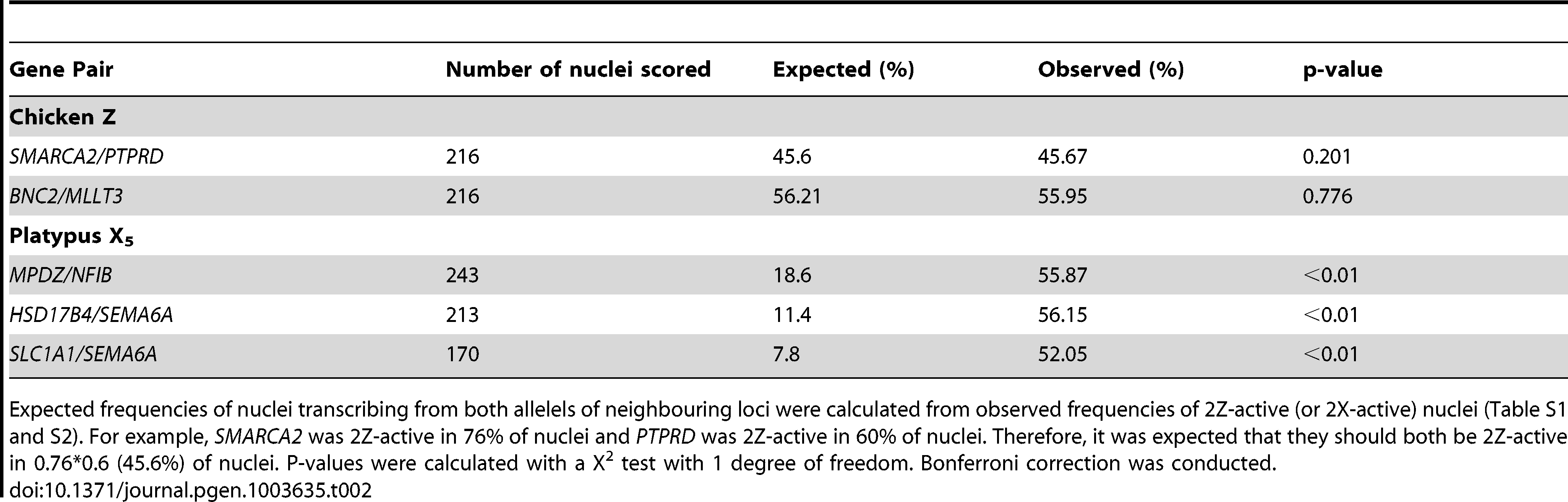 Frequency of nuclei transcribing both alleles of neighbouring loci.