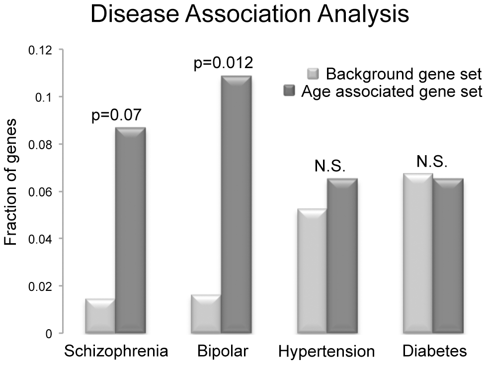 The frequency of disease associations within our gene set was analyzed and compared to the frequency of disease associations for all genes known to be associated with at least a single disease based on GAD annotation.
