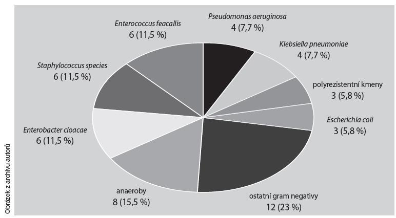 Mikrobiologická agens v traumatické ráně