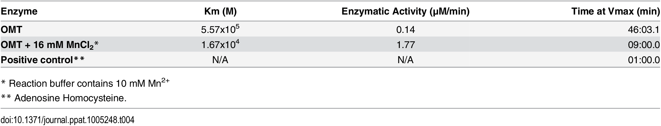 <i>In vitro</i> reaction kinetics of the methylation of Msp4 by OMT.