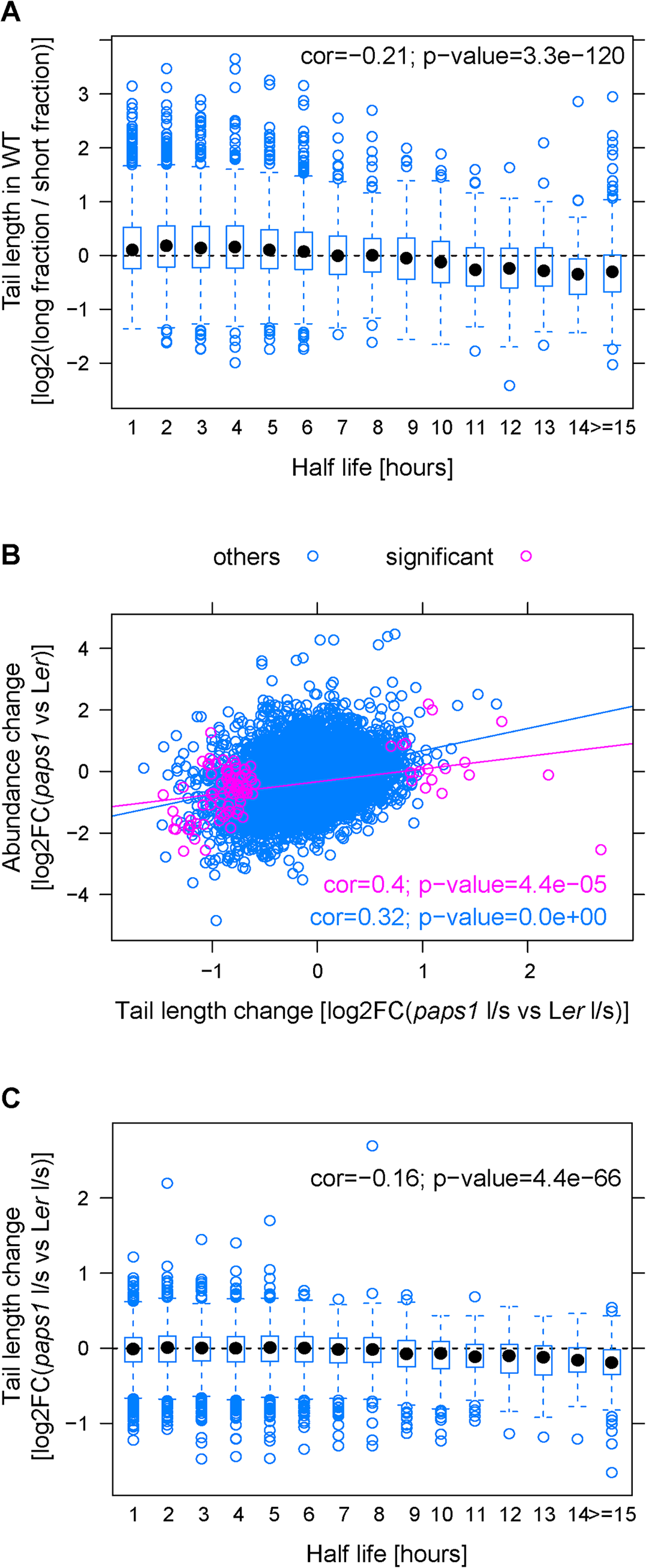 Correlations of mRNA features with poly(A)-tail length in wild type and with the extend of poly(A)-tail length change in <i>paps1</i> mutants versus wild type.