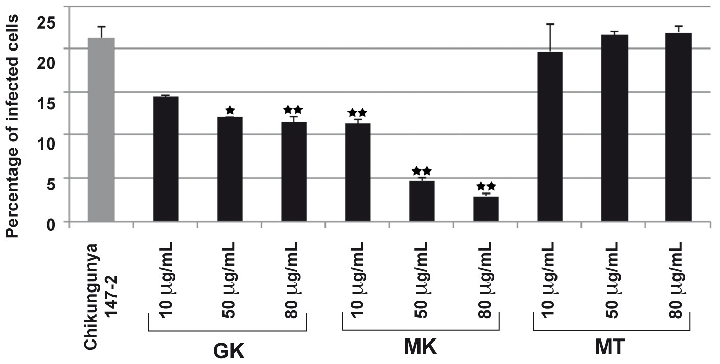 GK and MK CHIKV antiviral activity.