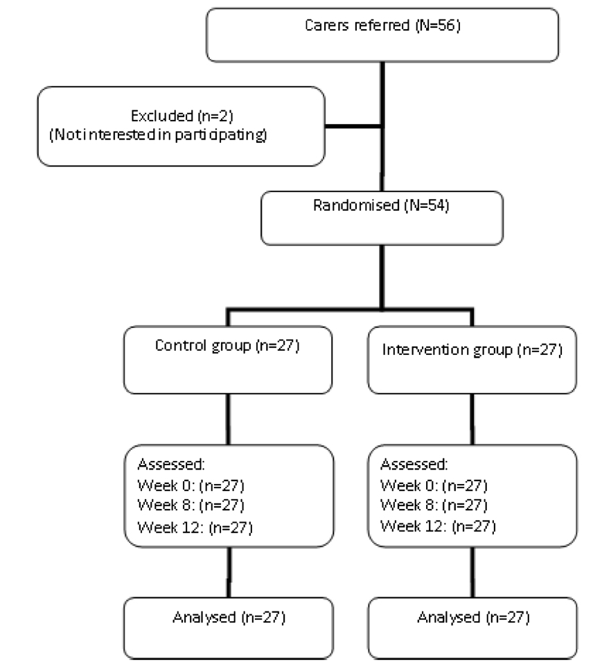 Fig. 1 Flow of caregiver participants through each phase of the study