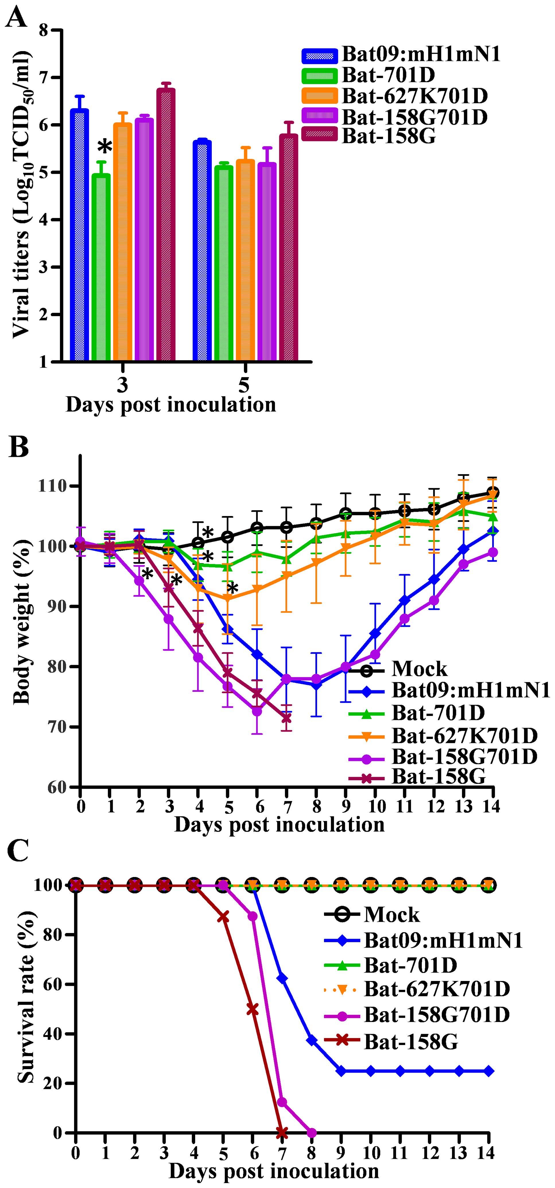 Pathogenicity of Bat-PB2 mutants in mice.
