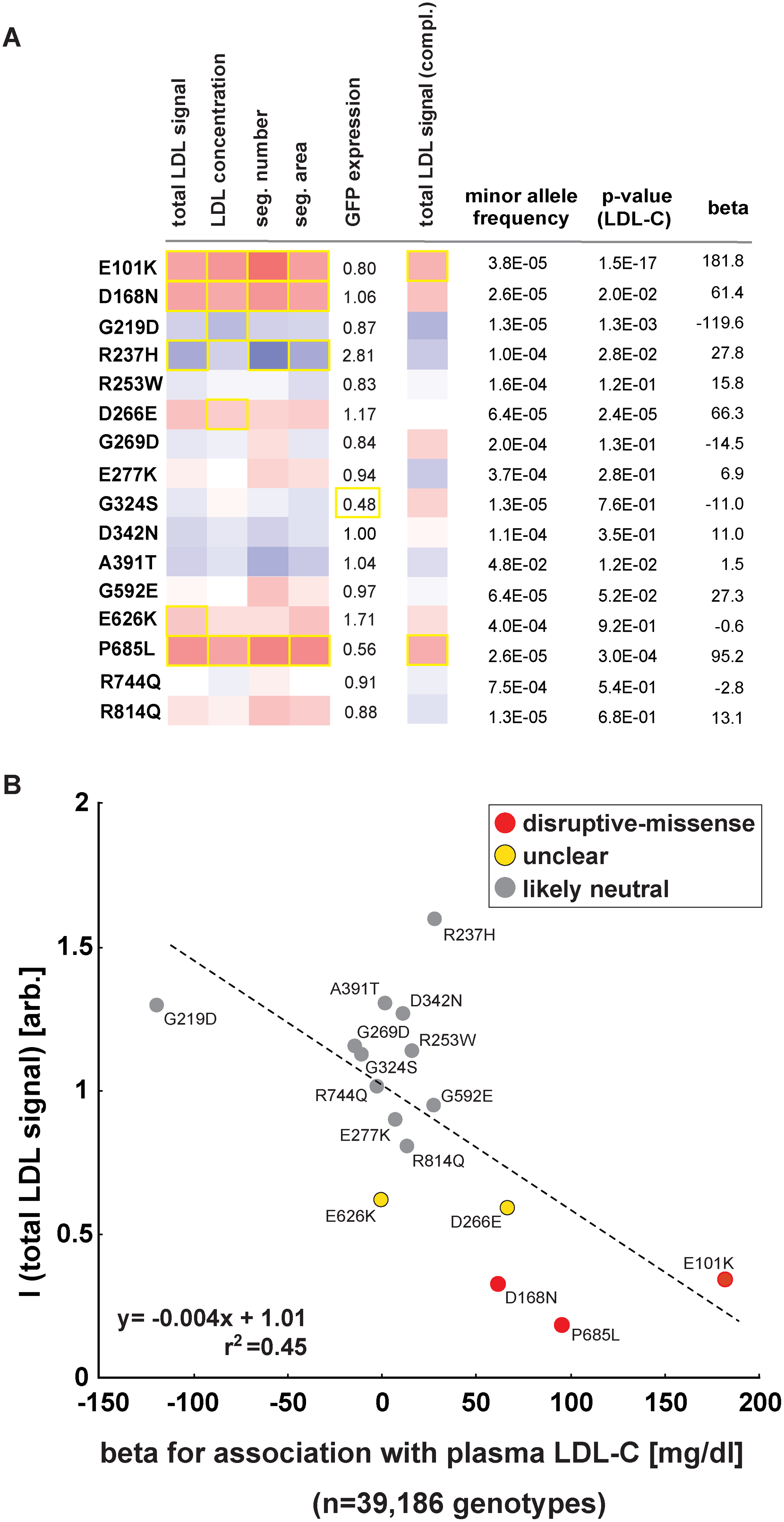 Impact of individual <i>LDLR</i> missense variants on cellular LDL-uptake correlates with single-variant association results for plasma LDL-C in ~40,000 individuals.
