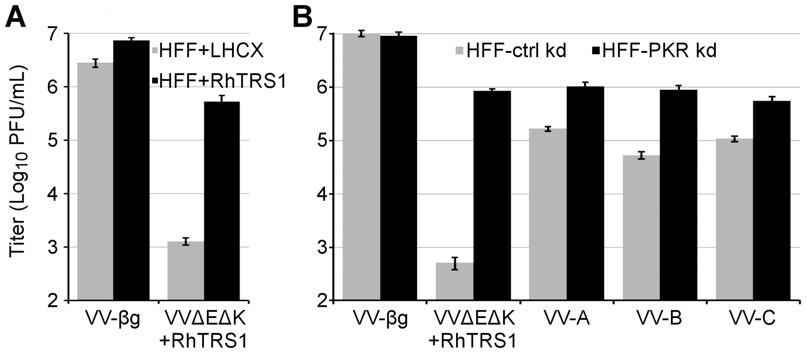 RhTRS1 overexpression or PKR knockdown permits efficient VVΔEΔK+RhTRS1 replication in HFF.