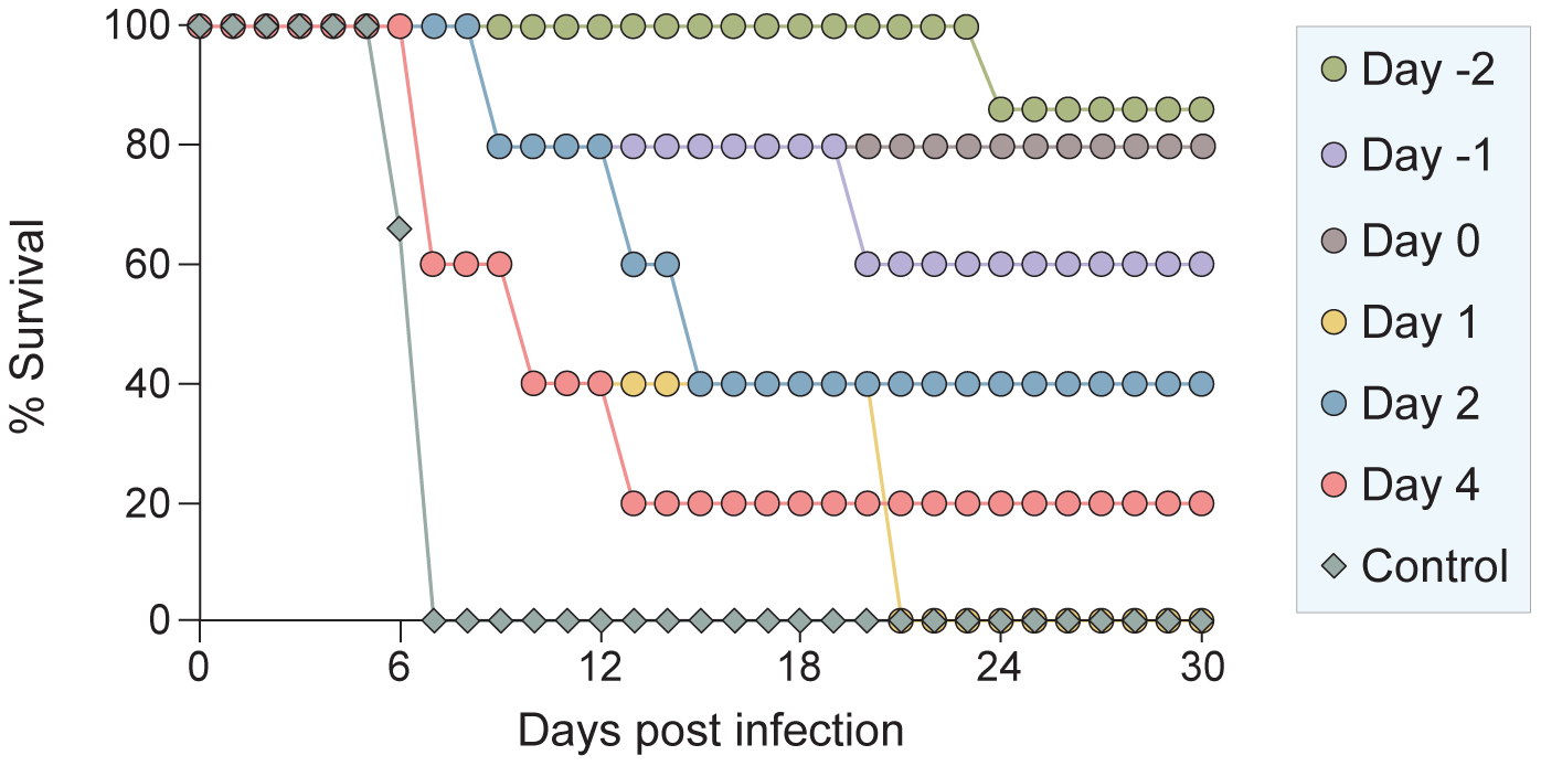 <i>In vivo</i> efficacy of sequence-optimized, cholesterol-tagged peptide.