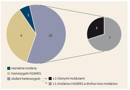 Molekulovo-genetické charakteristiky u 17 detí s Wilsonovou chorobou. Graph 1. Molecular-genetic characteristics in 17 children with Wilson's disease.