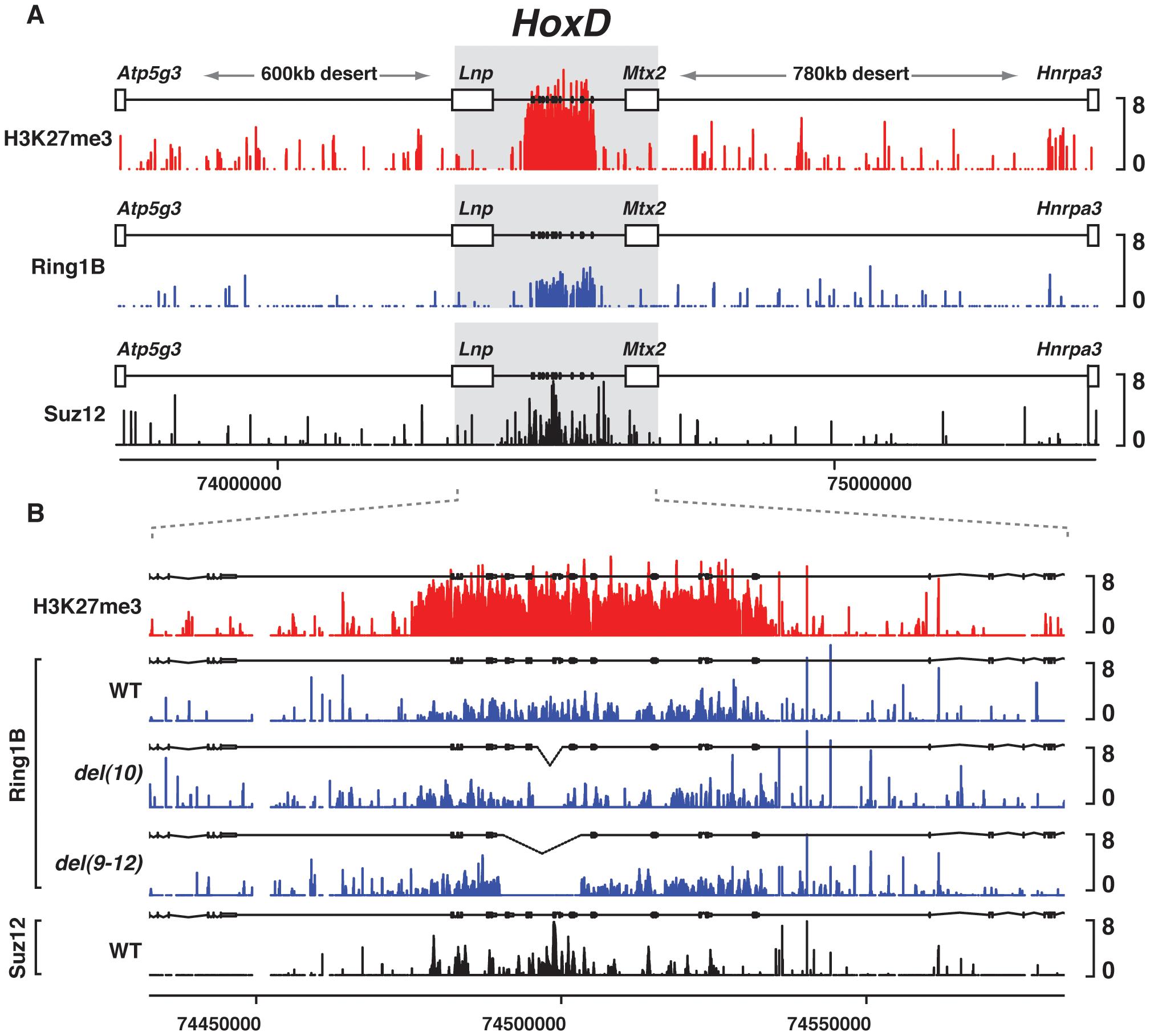 PRC1/2 profiles in various genetic configurations.