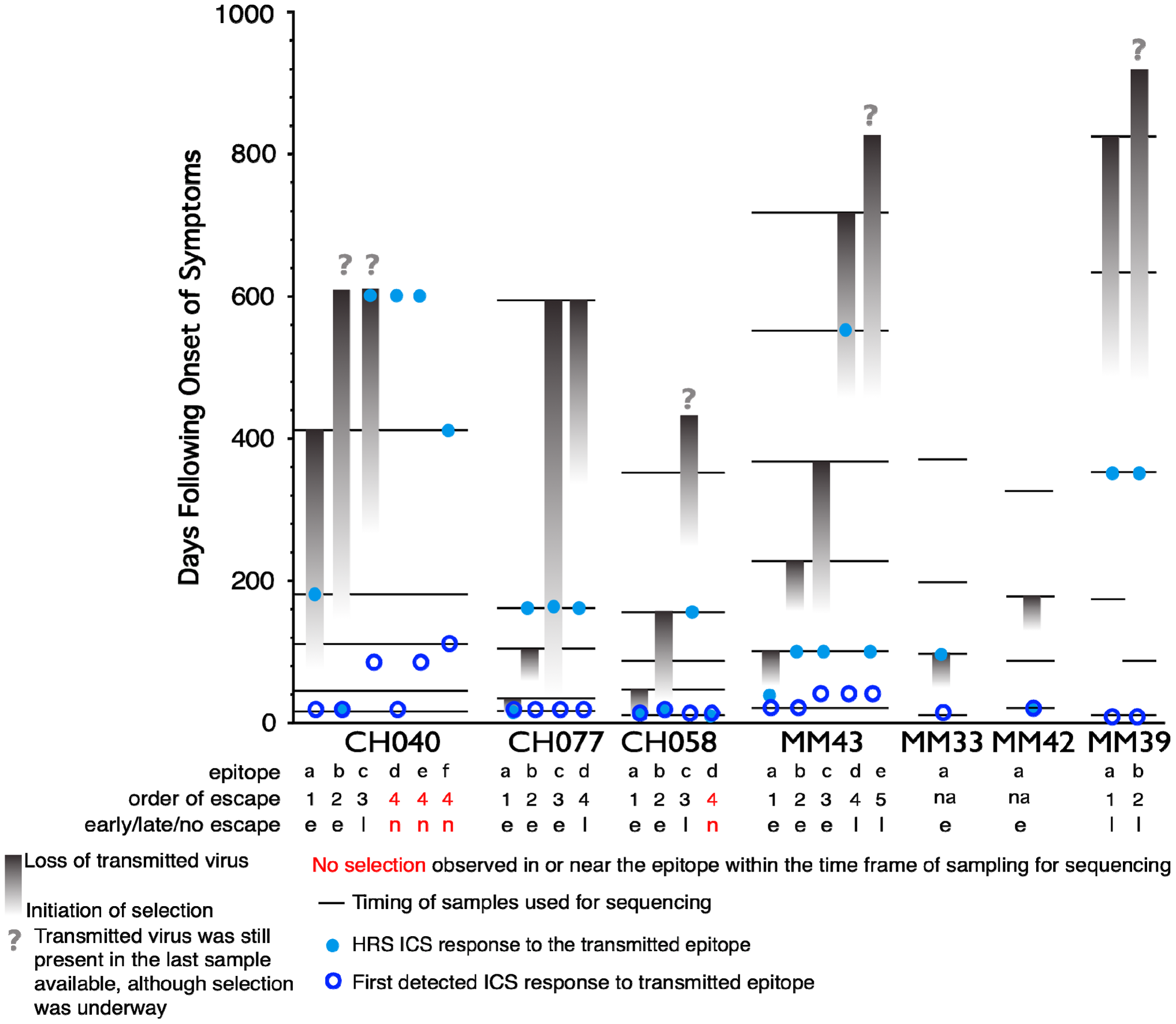 Timing of escape of each epitope relative to the first CD8+ T-cell responses.
