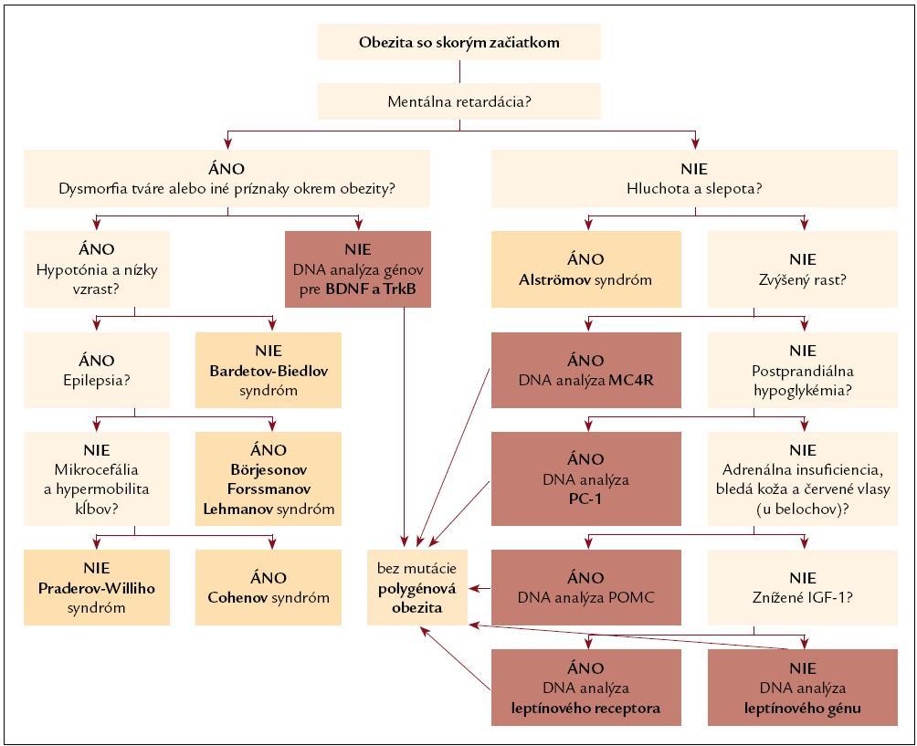 Diferenciálno-diagnostický postup pri obezite so skorým začiatkom.