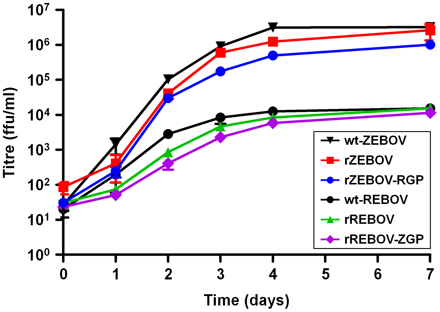 Growth kinetics of wild-type, recombinant and chimeric Ebola viruses during infection in VeroE6 cells.
