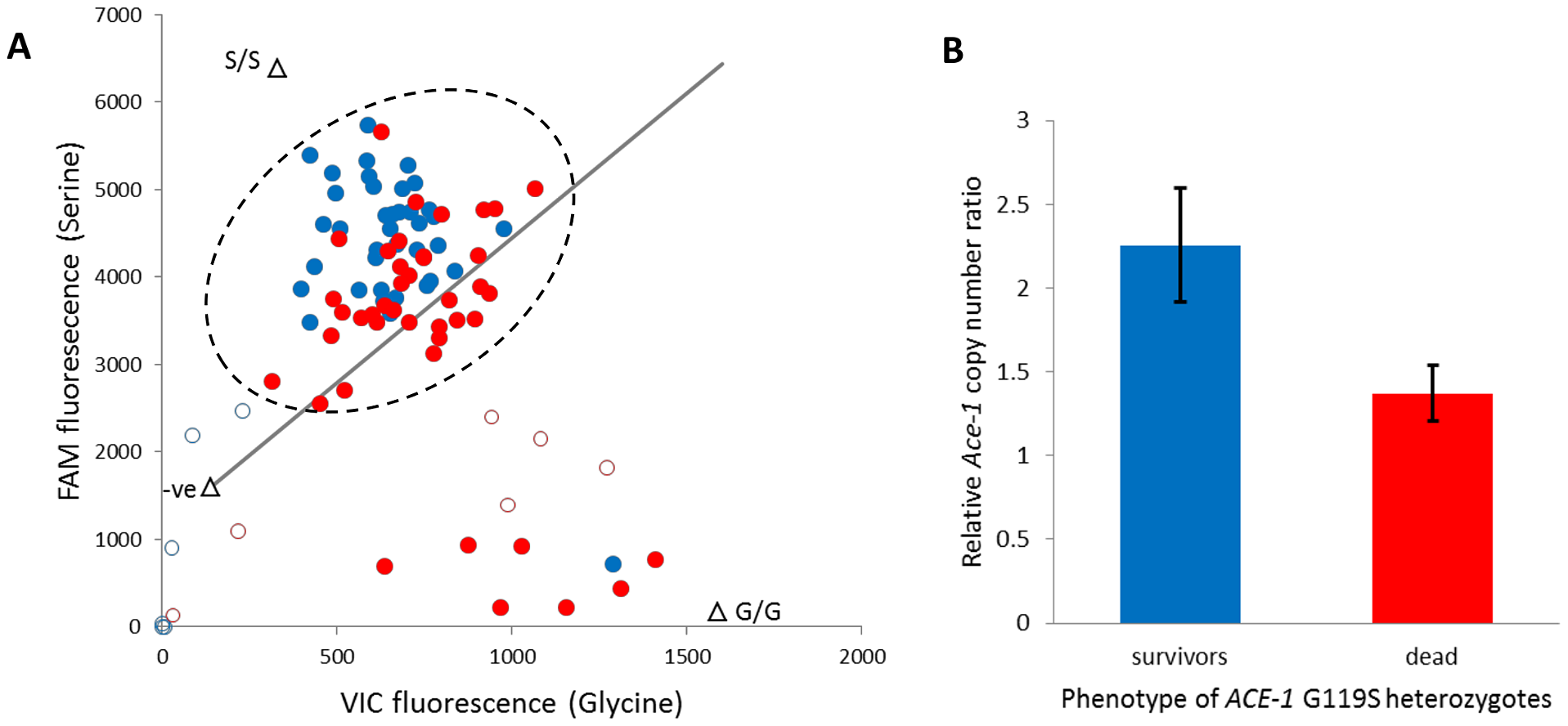 Role of target site allelic variation and copy number variation in bendiocarb resistance.
