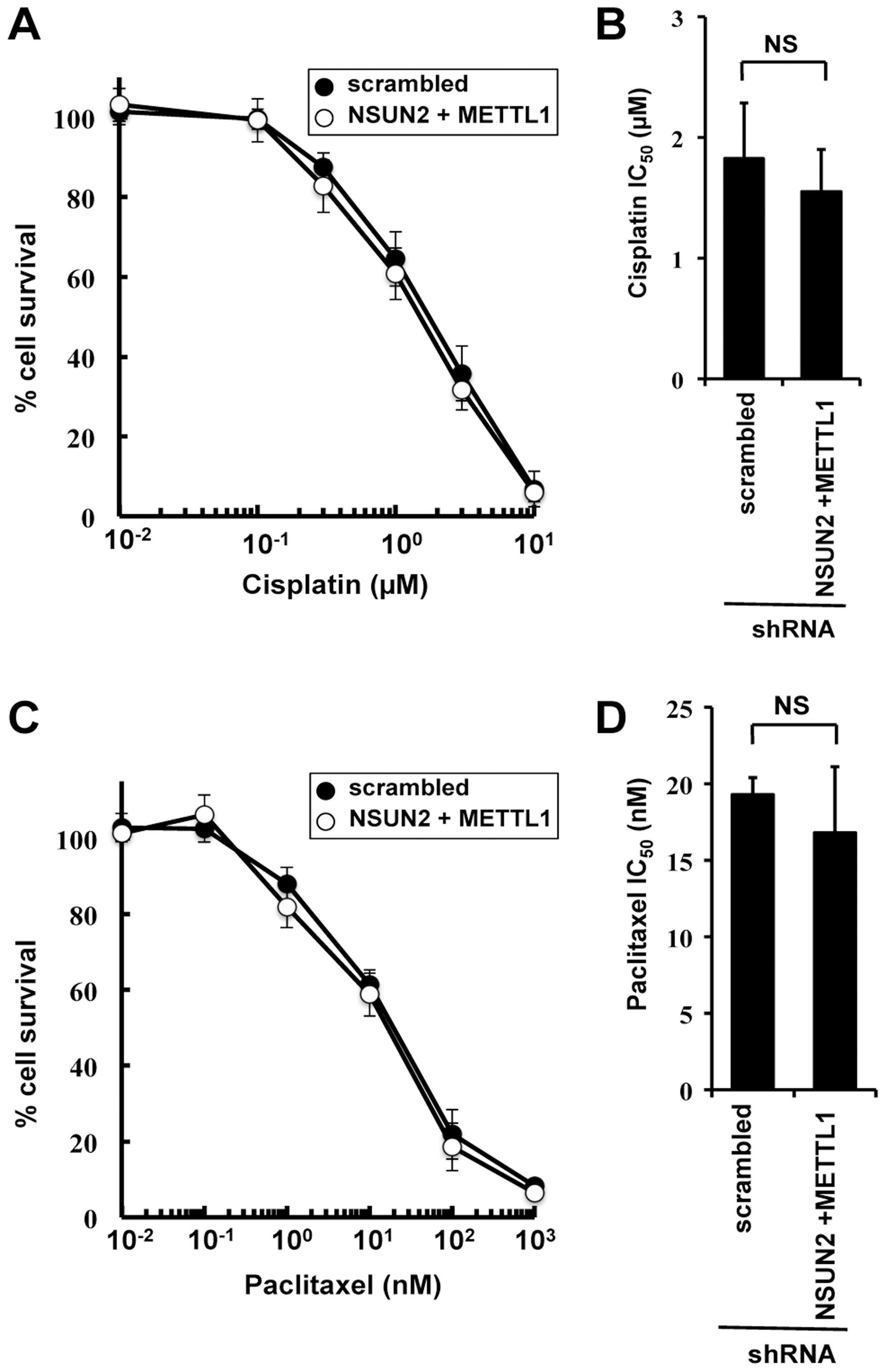 Effect of cisplatin and paclitaxel treatment in NSUN2 and METTL1 knockdown and double knockdown cells.