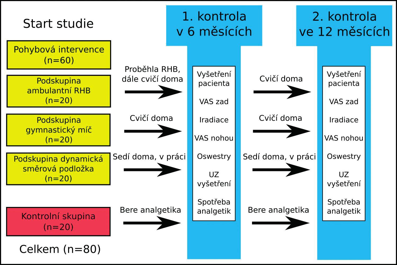 Obrázek ukazuje časový harmonogram průběhu studie a rozložení podskupin pacientů.