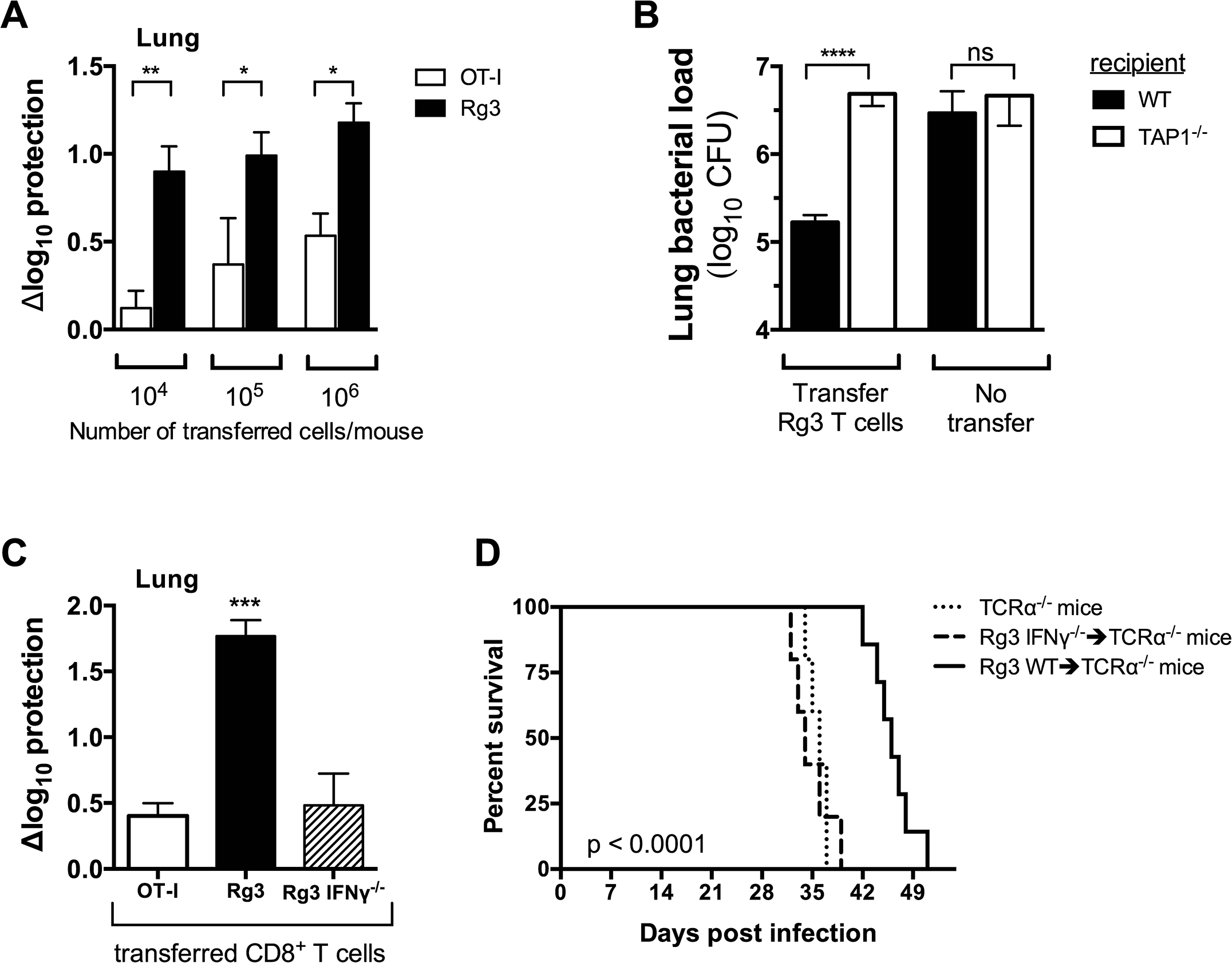 TAP1 and IFNγ are required for protection mediated by TB10-specific CD8+ T cells.