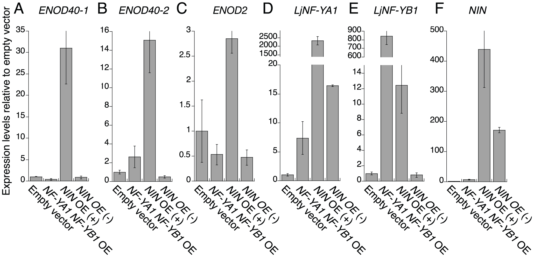 RT–PCR analysis of the expression of early nodulin genes and <i>LjNF-Y</i> subunit genes.