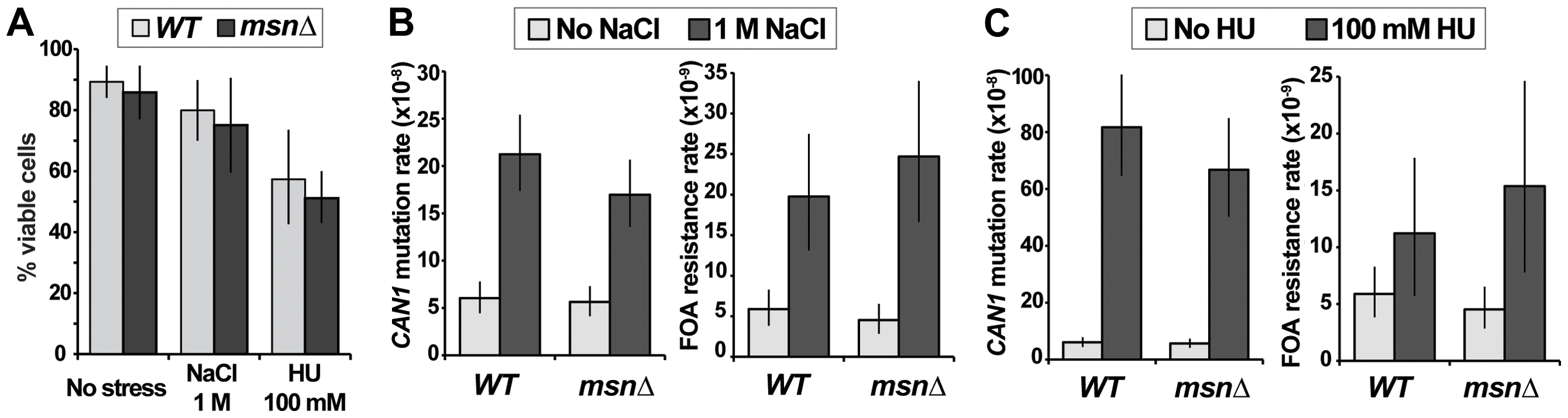Two types of environmental stress known to cause mutagenesis do not require <i>MSN2</i> and <i>MSN4</i>.