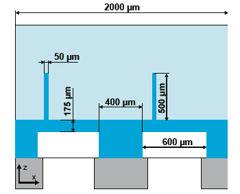 Fig. 1: Design details of the layout: the pressure channel (cavity) under the 175 μm thick membranes is 600 μm wide. In combination with the 400 μm wide supporting structure between two channels a pitch of 1000 μm is defined. The flaps are 500 μm high, 50 μm thick and 10000μm long, respectively.