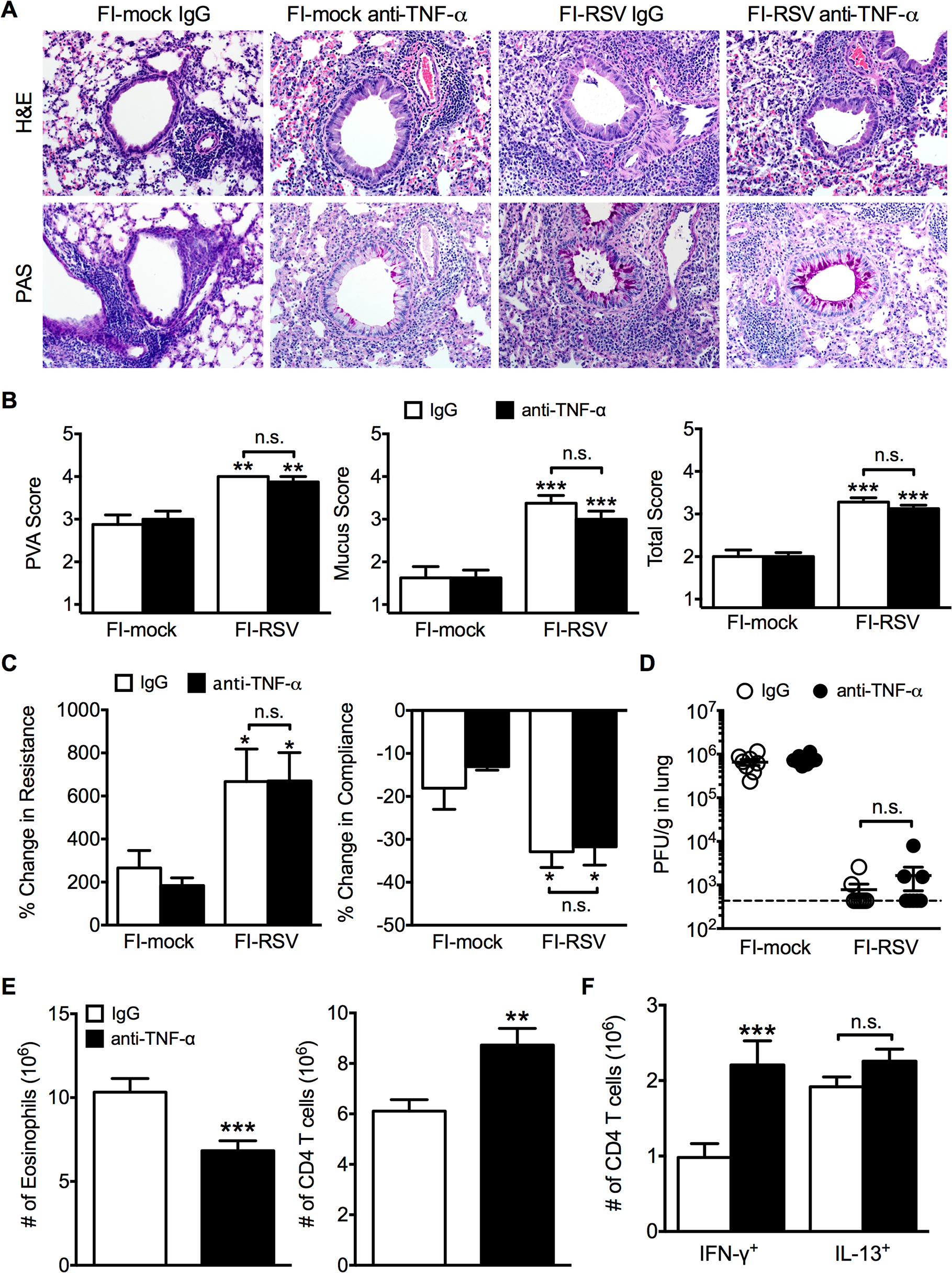TNF-α contributes to airway obstruction and weight loss during FI-RSV VED.