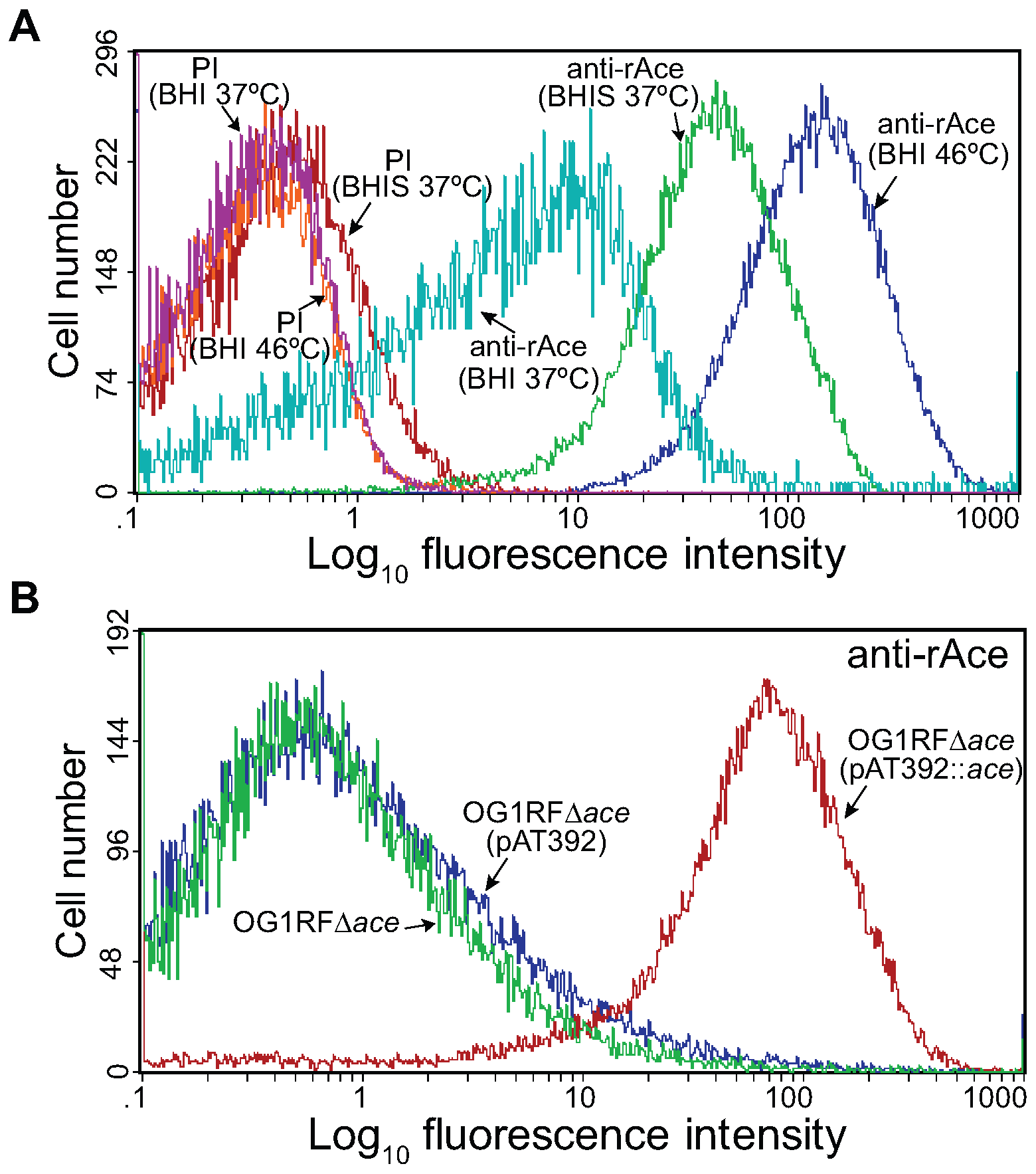 Flow cytometry analysis of cell surface expression of Ace by <i>E. faecalis</i> OG1RF, its isogenic <i>ace</i> deletion mutant and its <i>in trans</i> complemented <i>ace</i> deletion mutant.