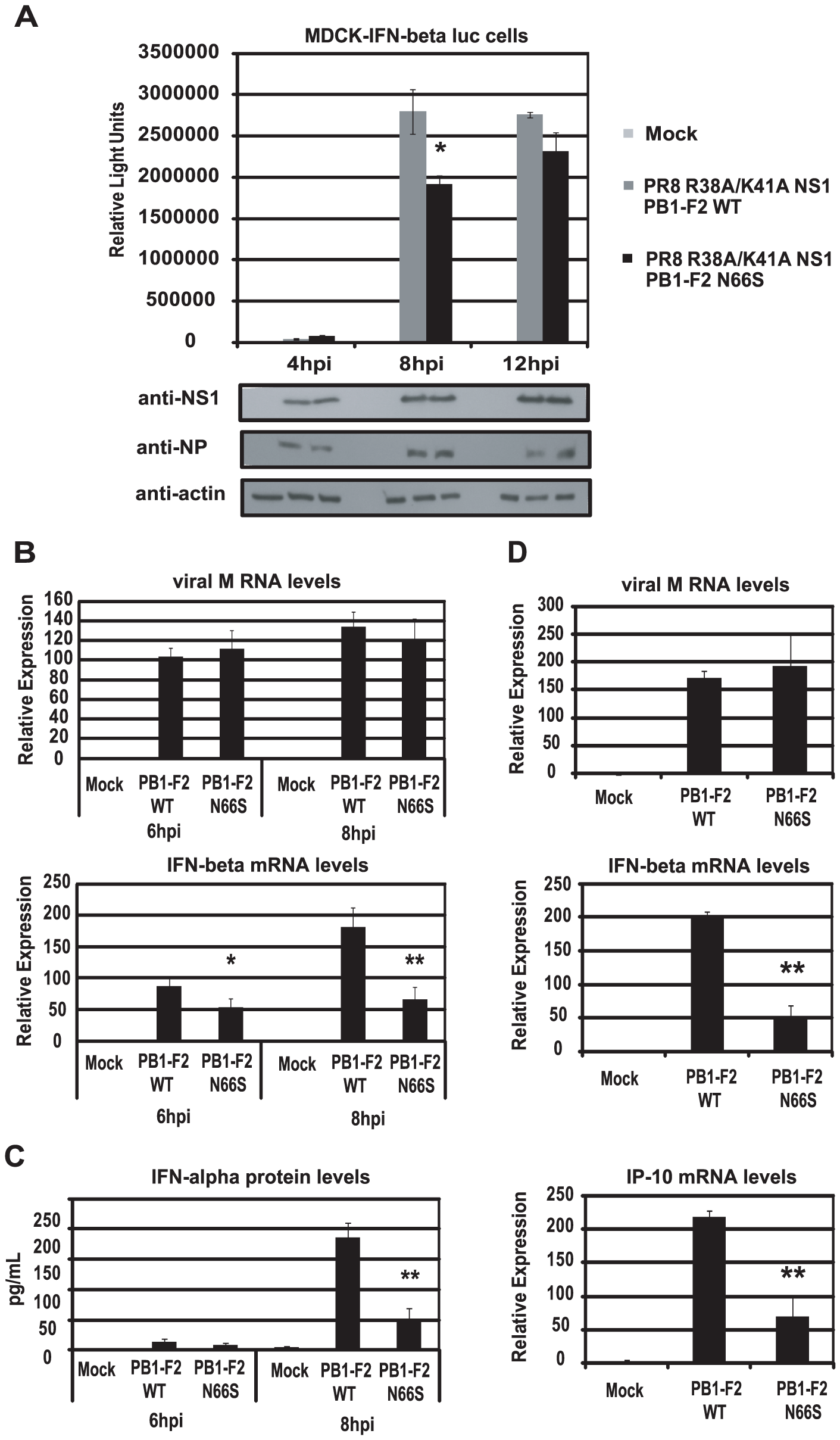 PB1-F2 N66S reduces IFN induction by a dsRNA and TRIM25 binding mutant NS1 influenza virus.