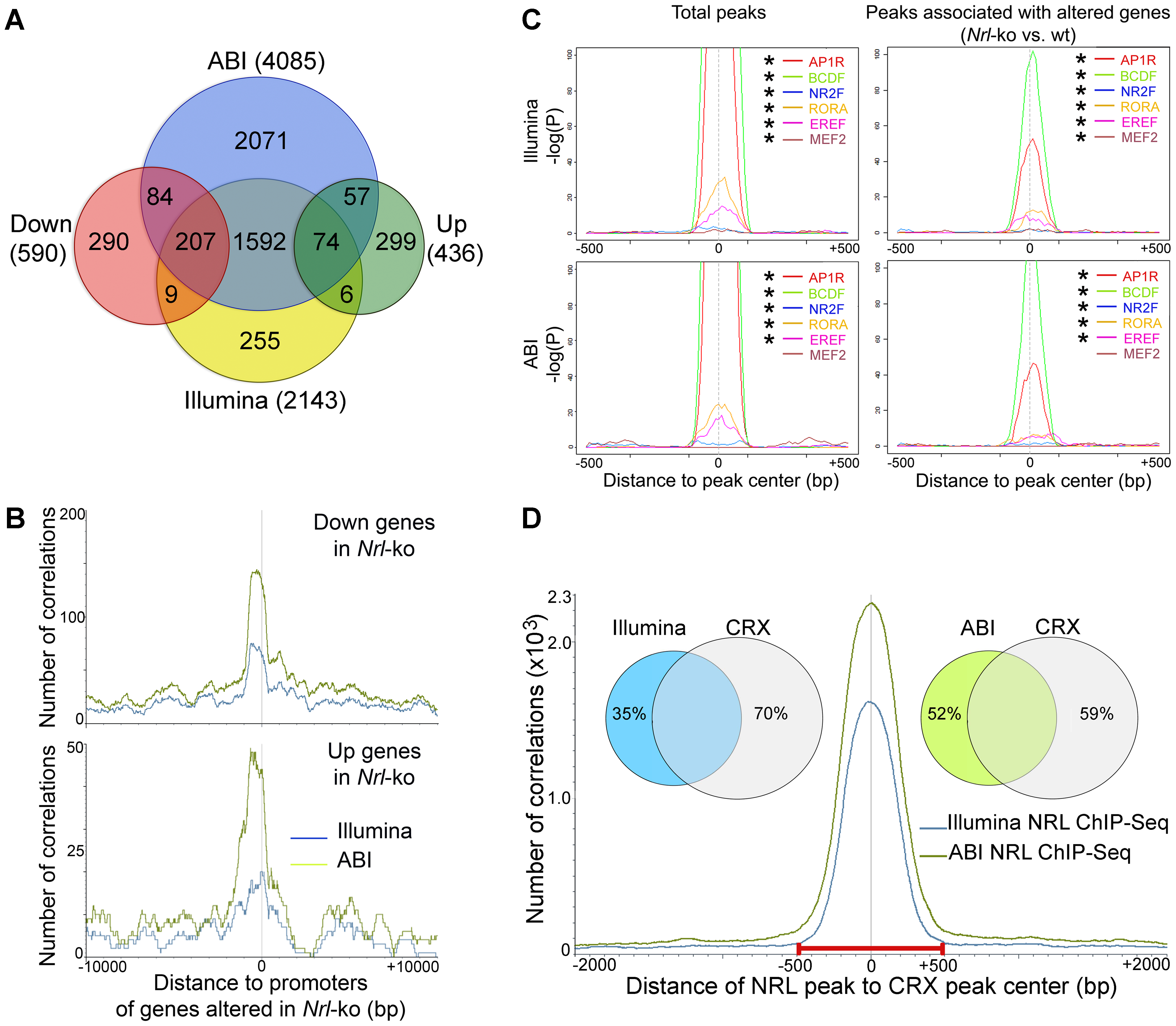 Identification of NRL target genes and co-regulatory transcription factors by ChIP–Seq and transcriptional profiling.