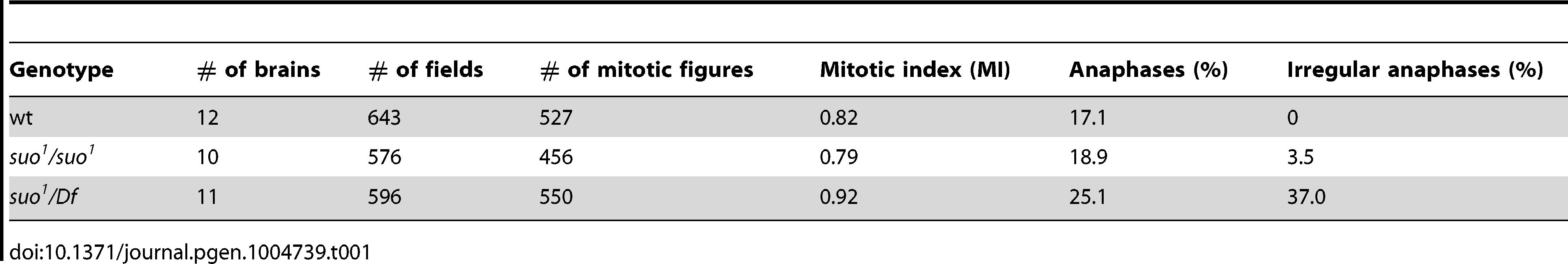 Mitotic parameters in <i>Top2</i> mutants.