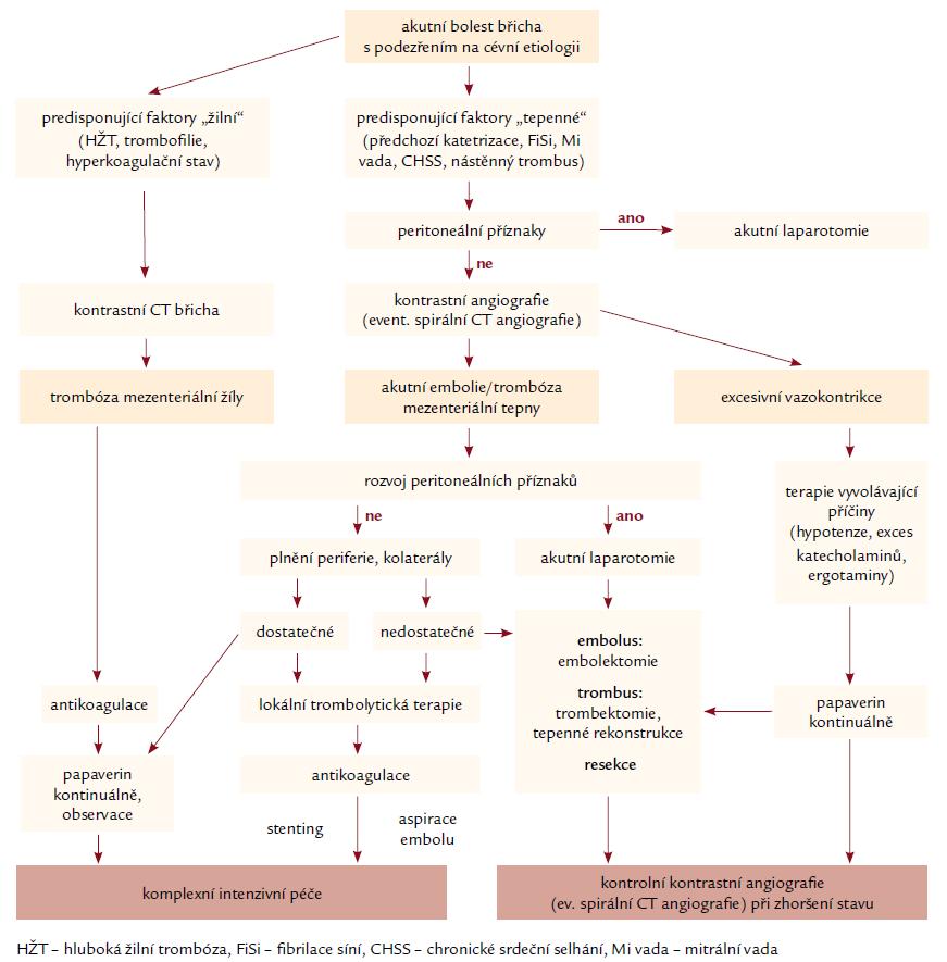 Schematický algoritmus diagnostiky a terapie akutní okluze mezenterické tepny, upravený autory podle Schootse et al [4] a ACC/AHA 2005 guidelines [7] se začleněním trombolytické terapie.