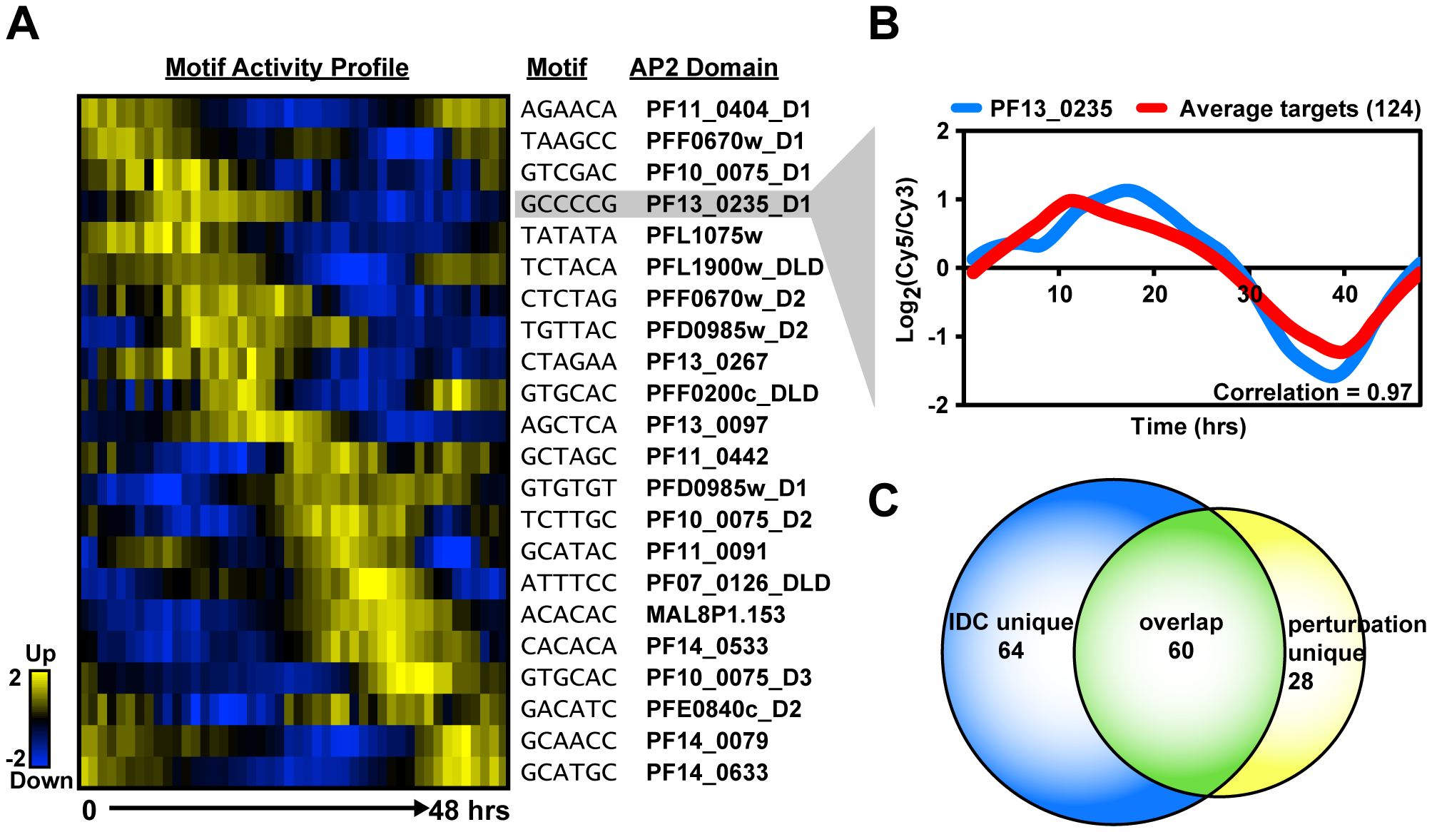 Activity profiles for AP2 motifs and refinement of target gene predictions during the IDC.