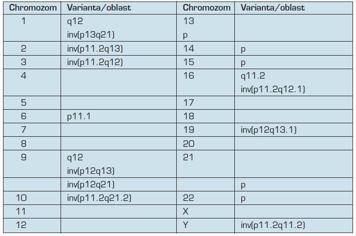 Přehled vybraných variabilních oblastí v lidském karyotypu (upraveno dle 4 a 11)