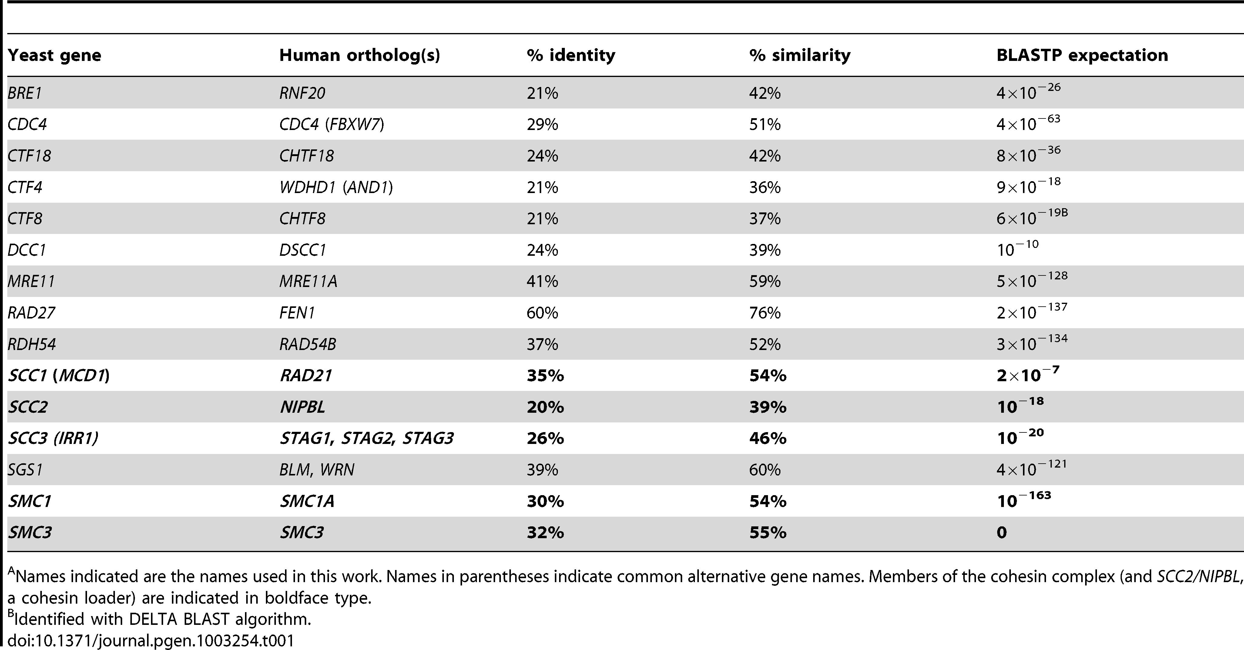 Yeast and human gene orthologs.<em class=&quot;ref&quot;>A</em>