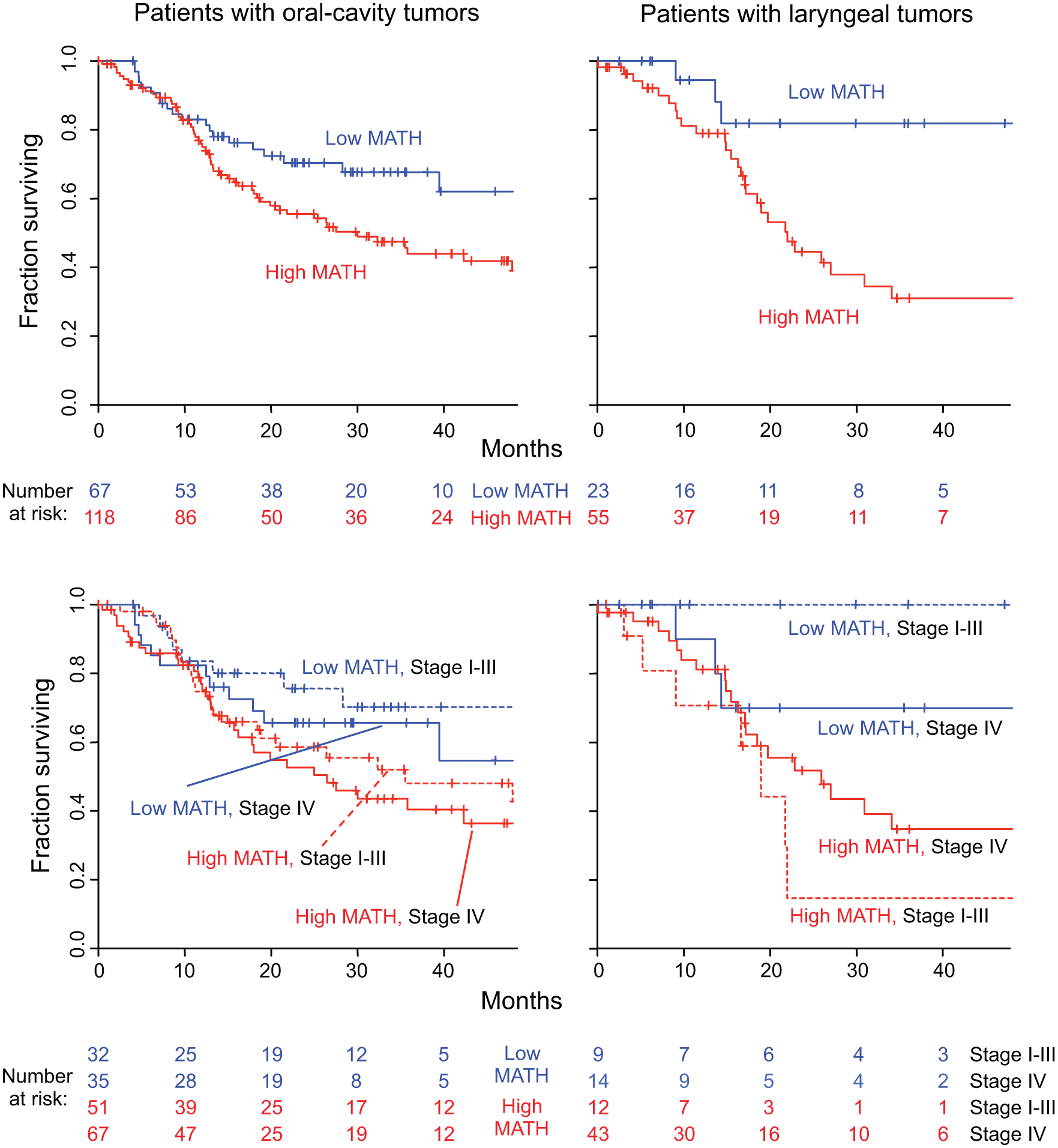 MATH value and mortality in patients with tumors in the oral cavity or the larynx.