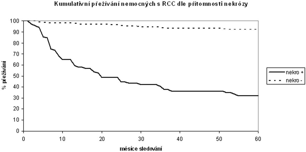 Kumulativní tumor-specifické přežívání nemocných po operaci pro světlobuněčný karcinom ledviny v závislosti na přítomnosti nekrózy karcinomu Cumulative tumor-specific surviving of patients with Clear Cell Renal Carcinoma after surgery in dependency on tumor necrosis presence